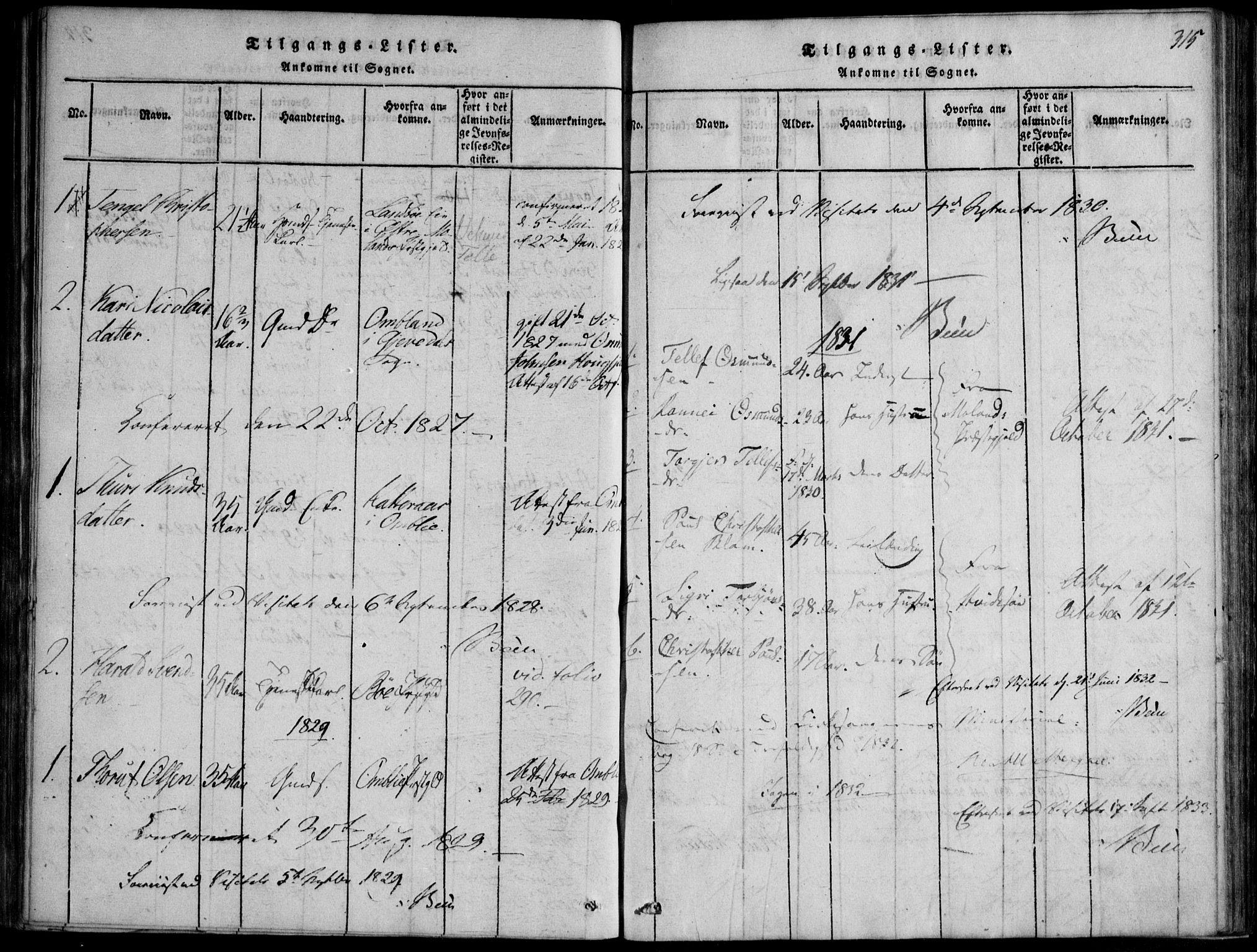 SAKO, Nissedal kirkebøker, F/Fb/L0001: Ministerialbok nr. II 1, 1814-1845, s. 315