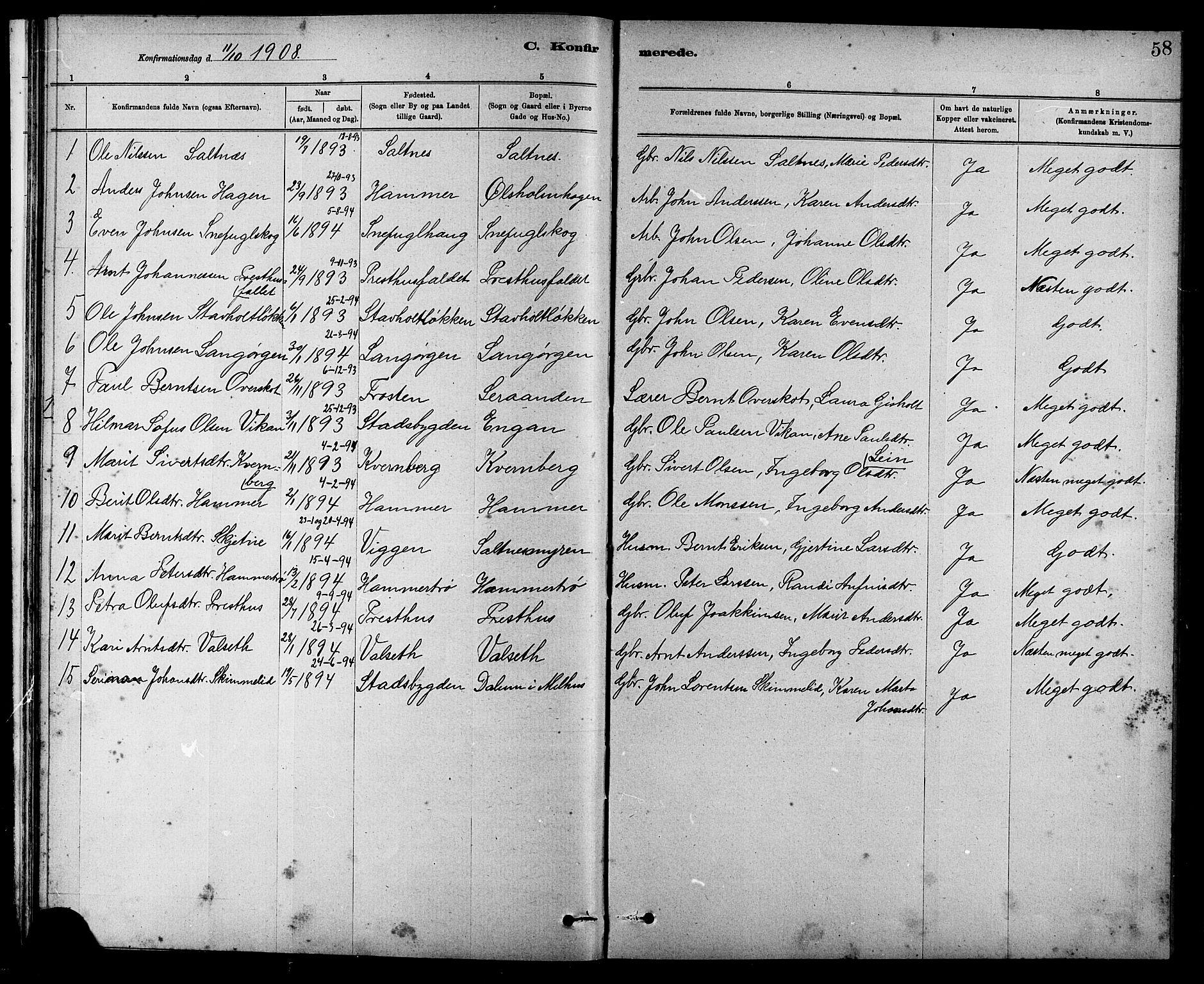 SAT, Ministerialprotokoller, klokkerbøker og fødselsregistre - Sør-Trøndelag, 666/L0790: Klokkerbok nr. 666C03, 1885-1908, s. 58
