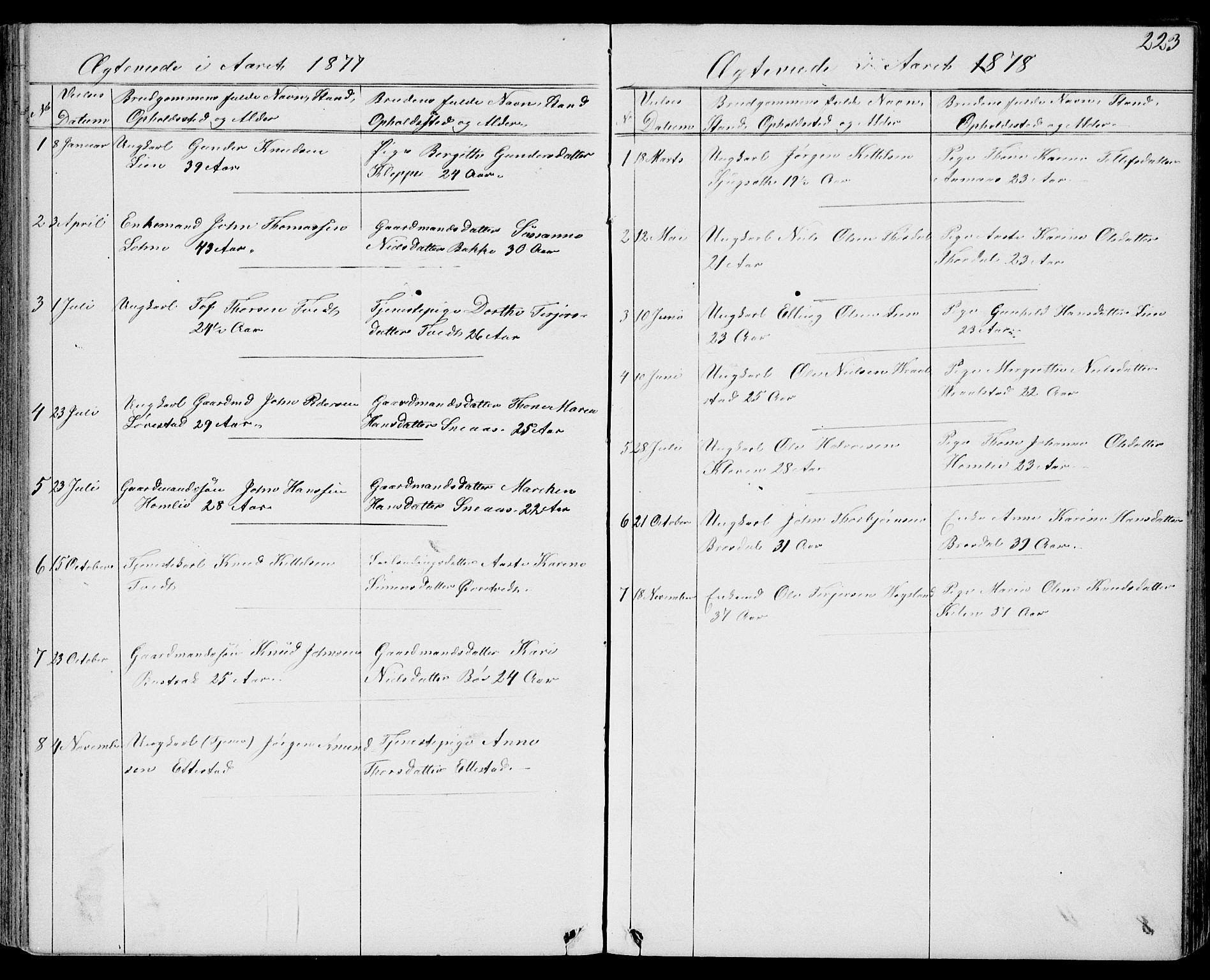 SAKO, Drangedal kirkebøker, G/Gb/L0001: Klokkerbok nr. II 1, 1856-1894, s. 223