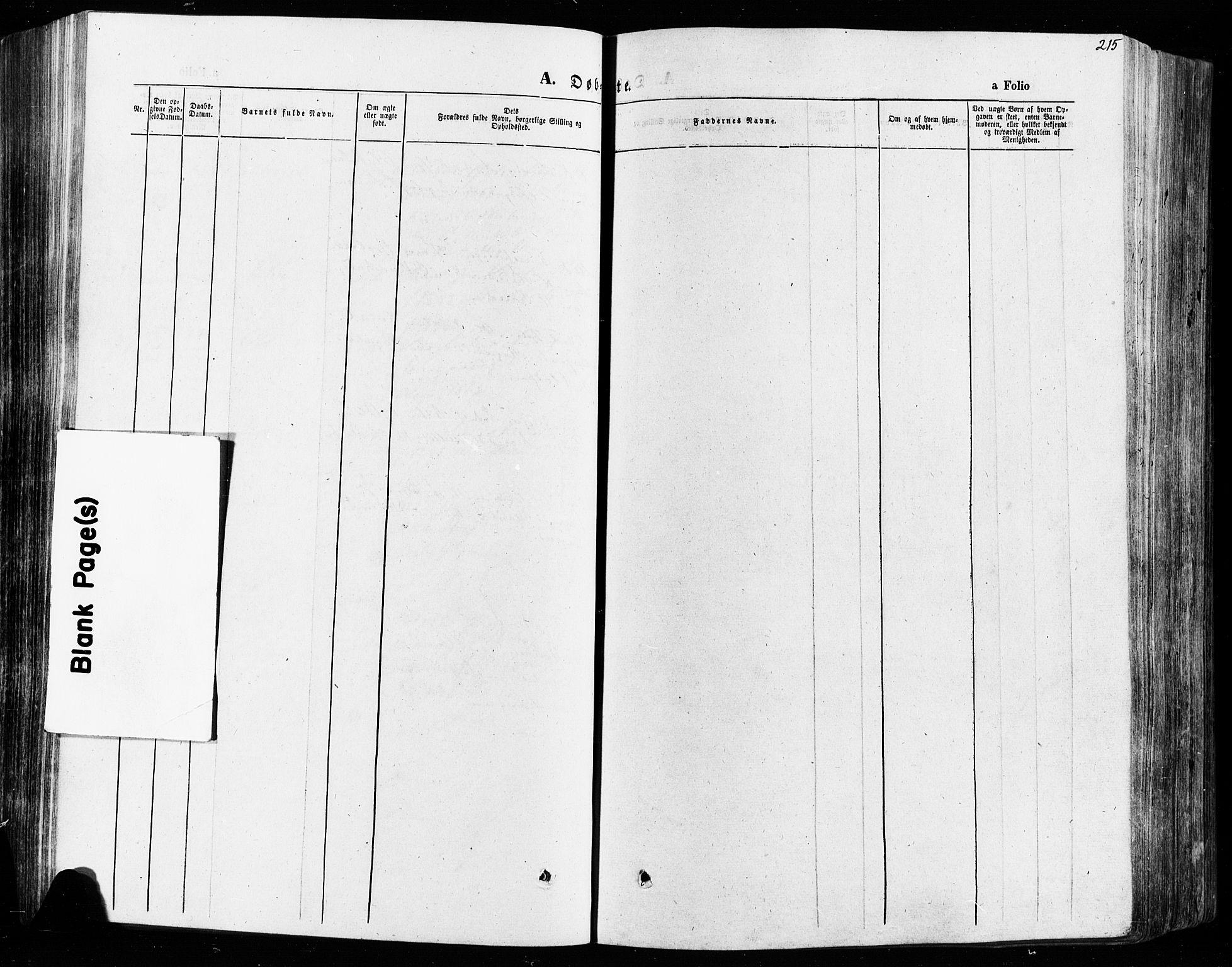 SAH, Vågå prestekontor, Ministerialbok nr. 7 /2, 1873-1886, s. 215