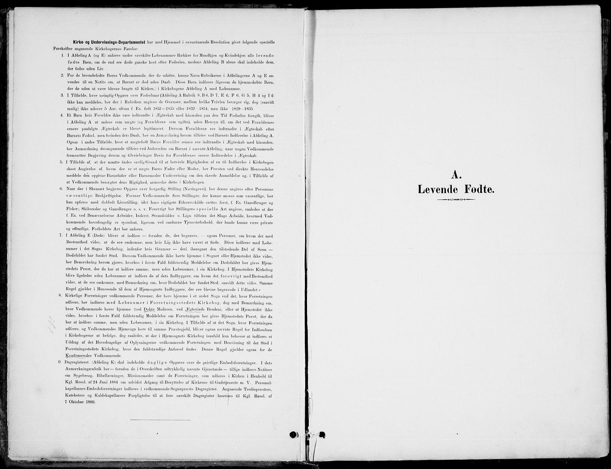 SAKO, Hole kirkebøker, F/Fa/L0009: Ministerialbok nr. I 9, 1892-1907