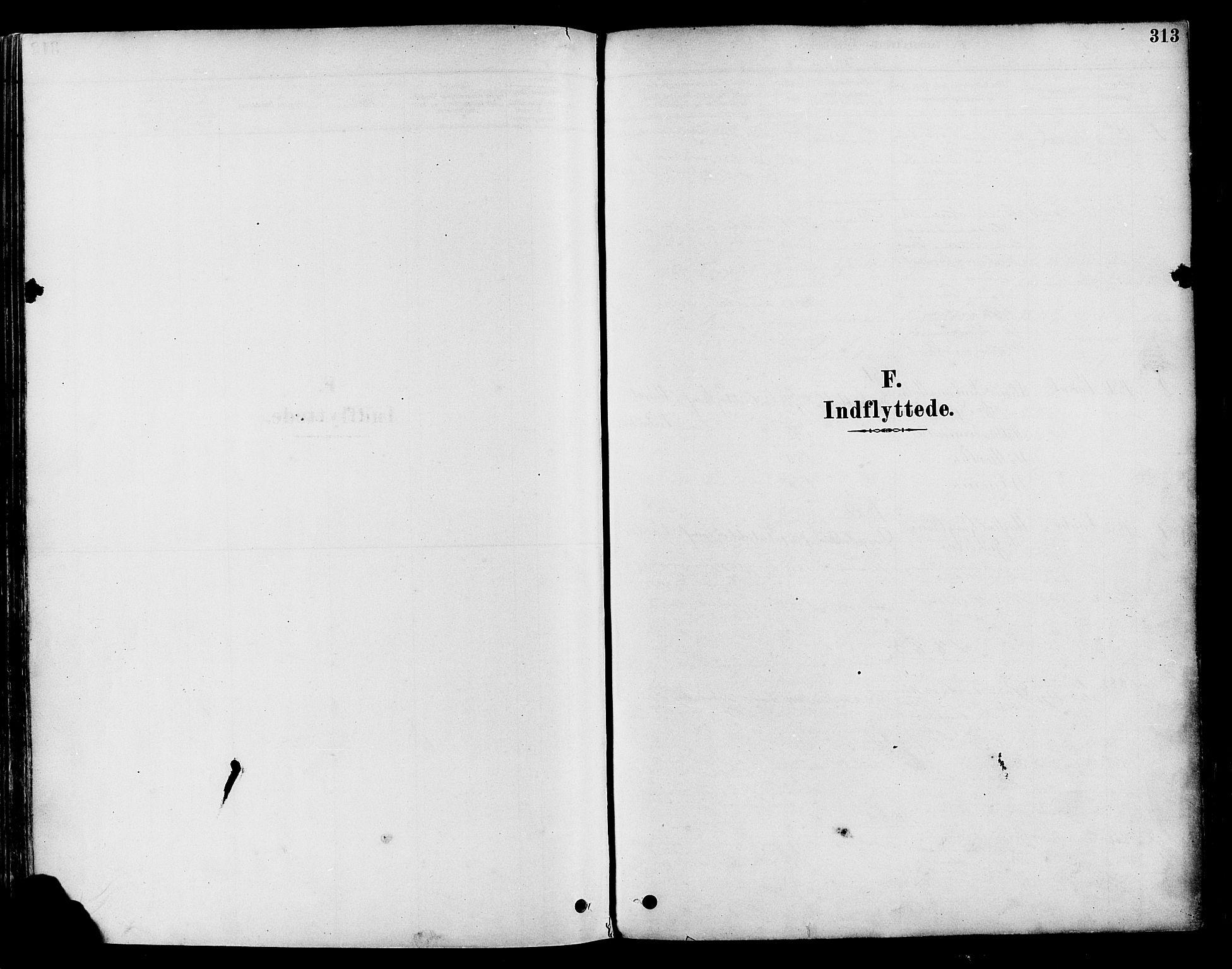 SAH, Vestre Toten prestekontor, Ministerialbok nr. 9, 1878-1894, s. 313