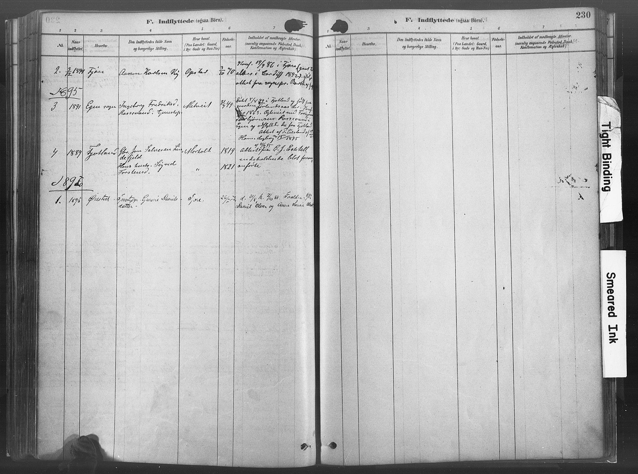 SAK, Hommedal sokneprestkontor, F/Fa/Fab/L0006: Ministerialbok nr. A 6, 1878-1897, s. 230