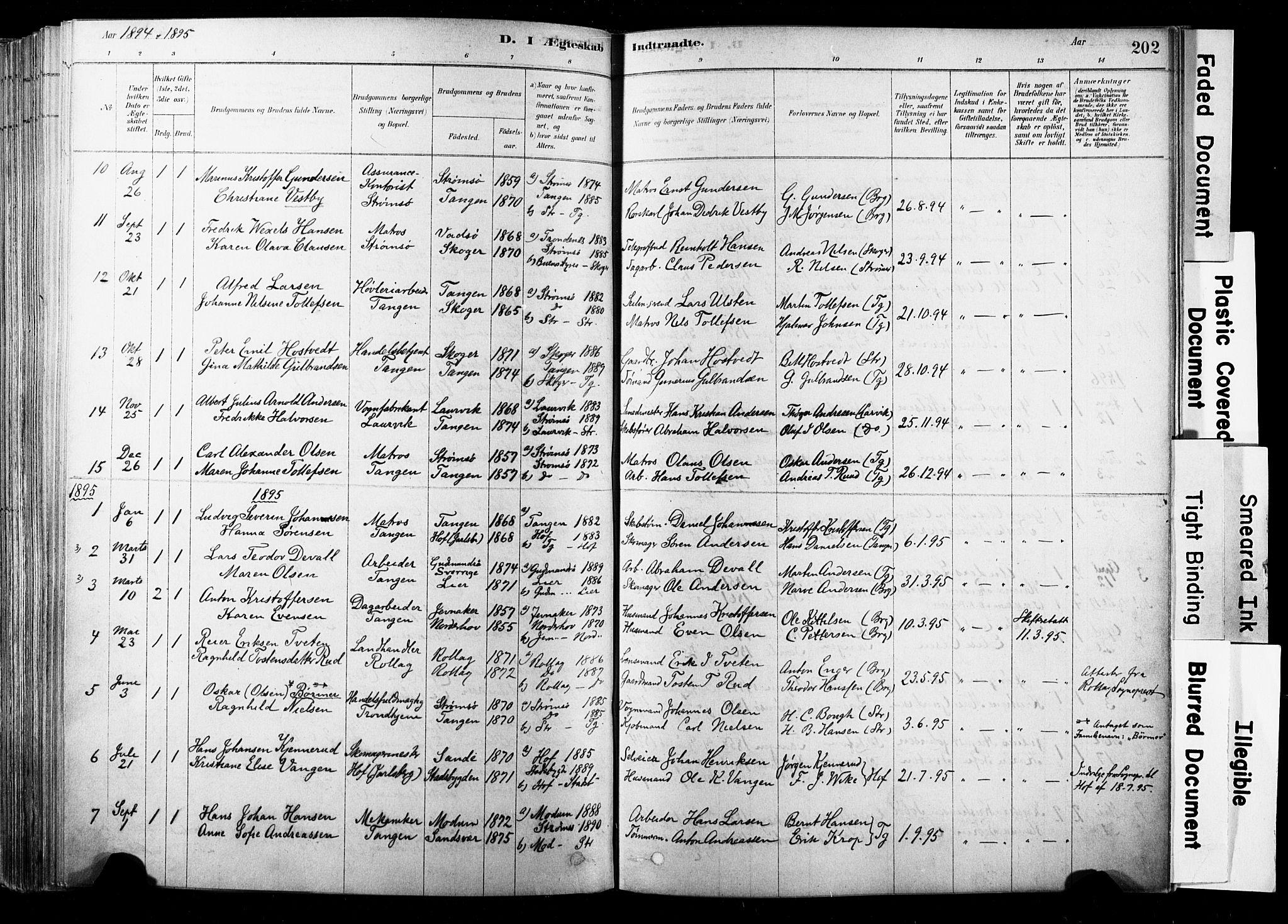 SAKO, Strømsø kirkebøker, F/Fb/L0006: Ministerialbok nr. II 6, 1879-1910, s. 202