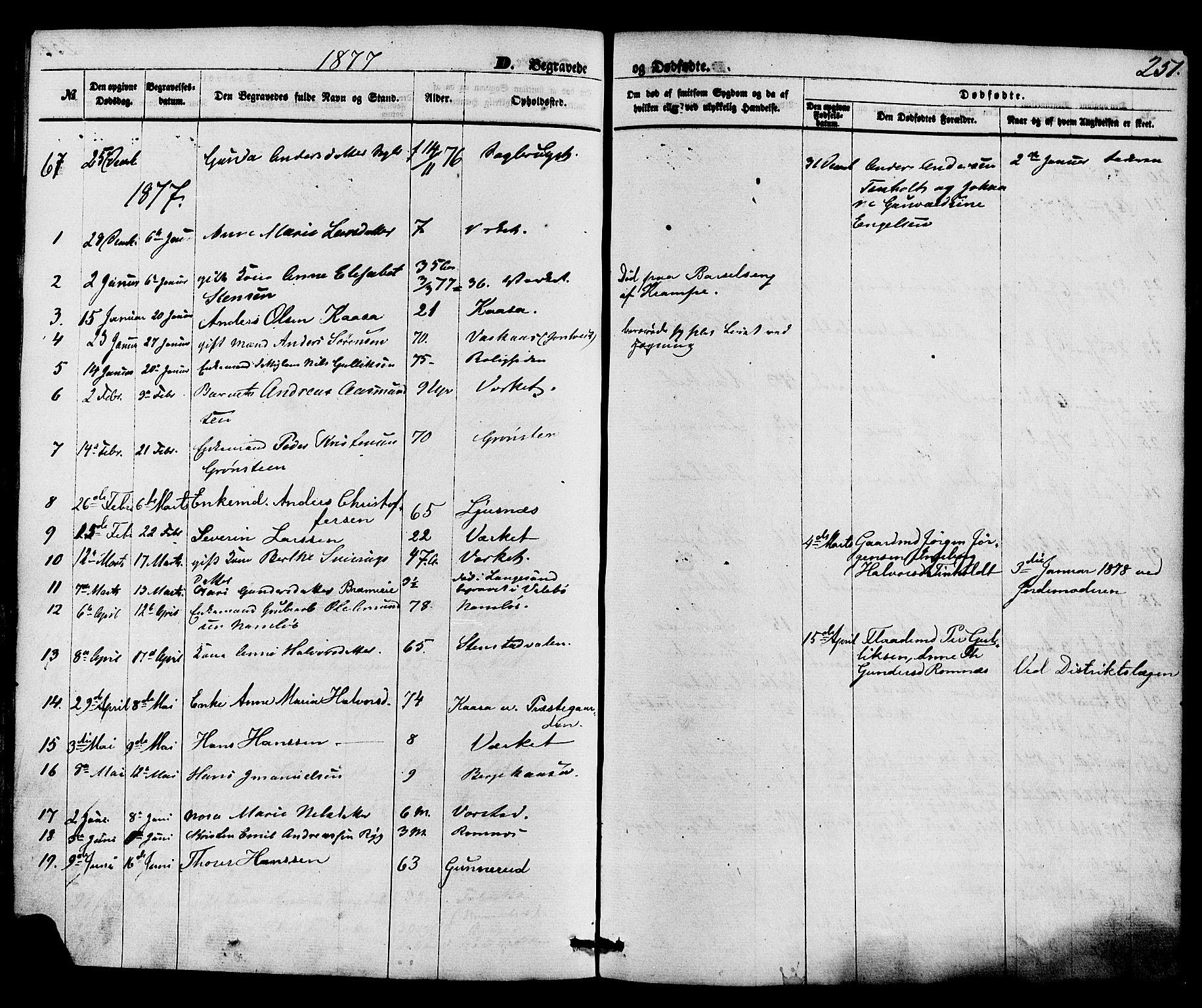 SAKO, Holla kirkebøker, F/Fa/L0007: Ministerialbok nr. 7, 1869-1881, s. 251
