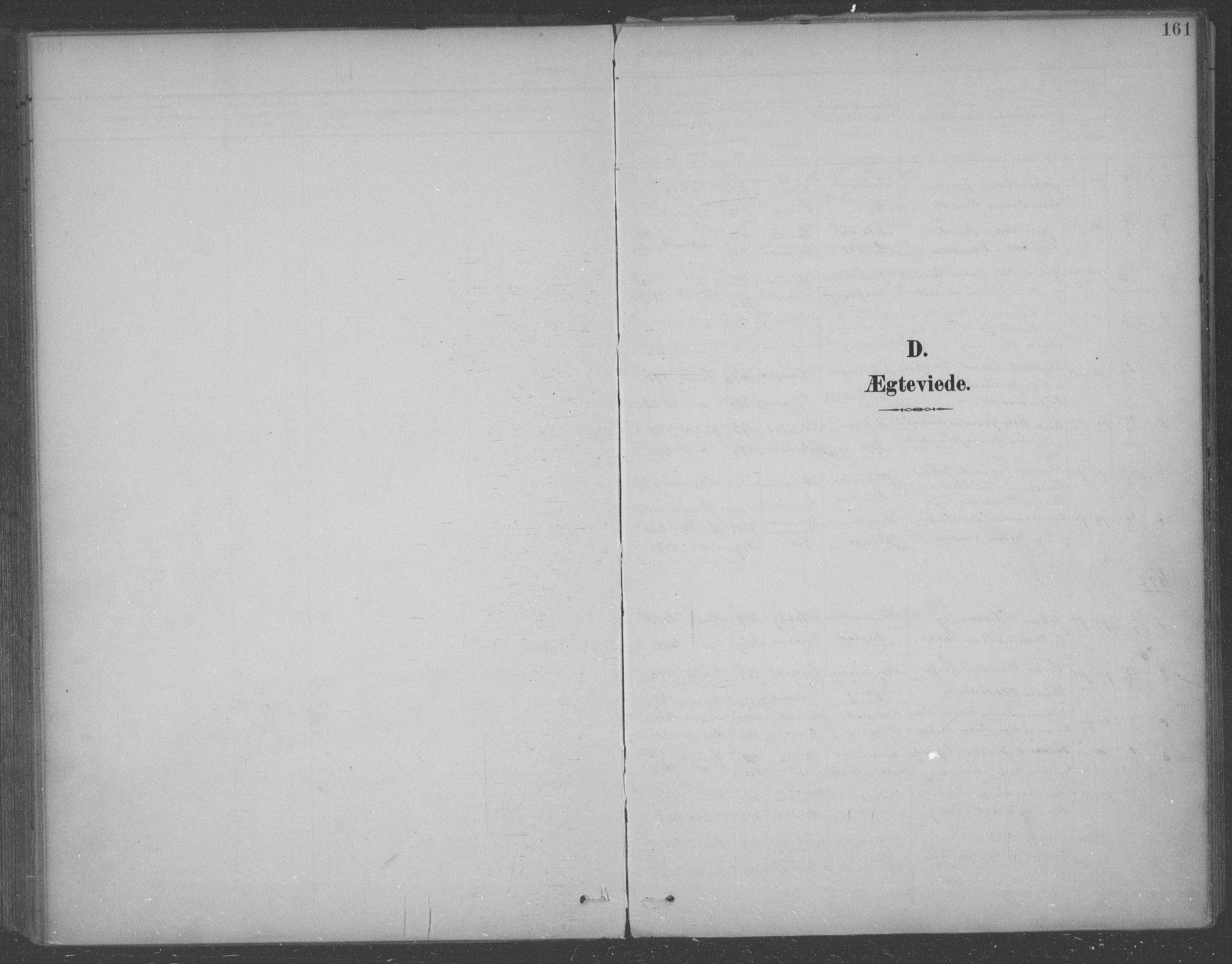 SAO, Aremark prestekontor Kirkebøker, F/Fb/L0005: Ministerialbok nr. II 5, 1895-1919, s. 161