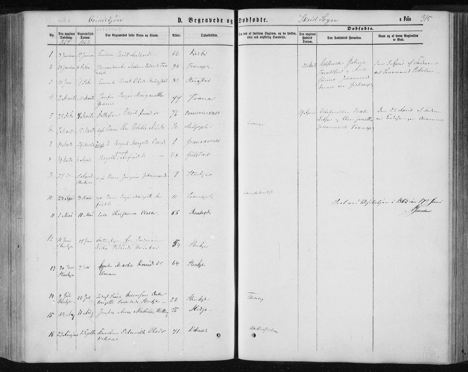 SAT, Ministerialprotokoller, klokkerbøker og fødselsregistre - Nord-Trøndelag, 735/L0345: Ministerialbok nr. 735A08 /2, 1863-1872, s. 315