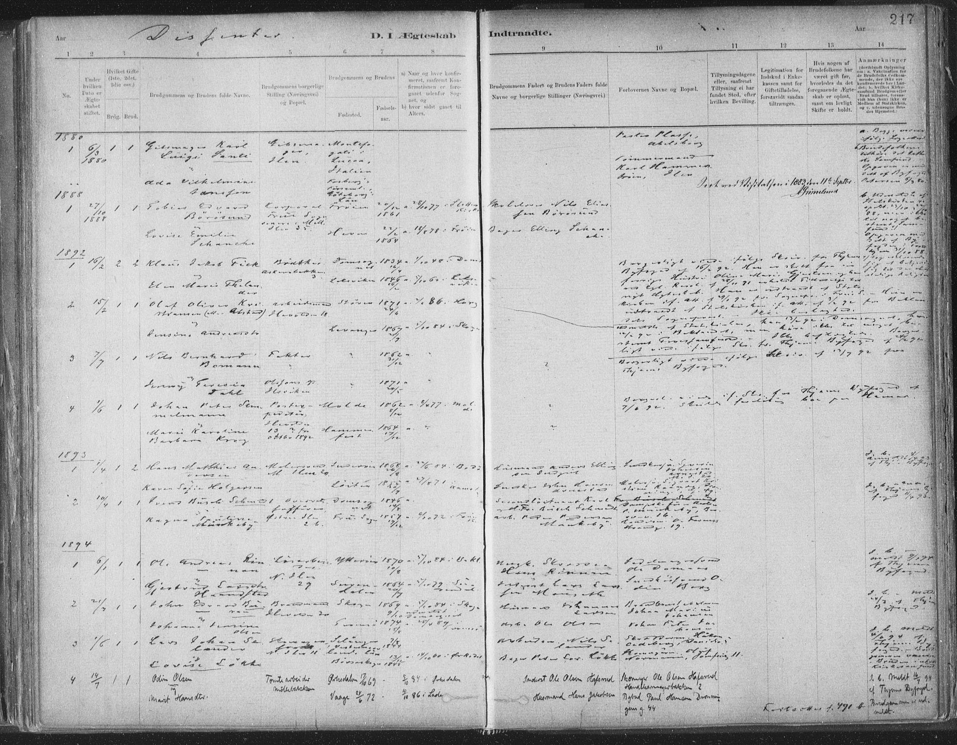 SAT, Ministerialprotokoller, klokkerbøker og fødselsregistre - Sør-Trøndelag, 603/L0162: Ministerialbok nr. 603A01, 1879-1895, s. 217