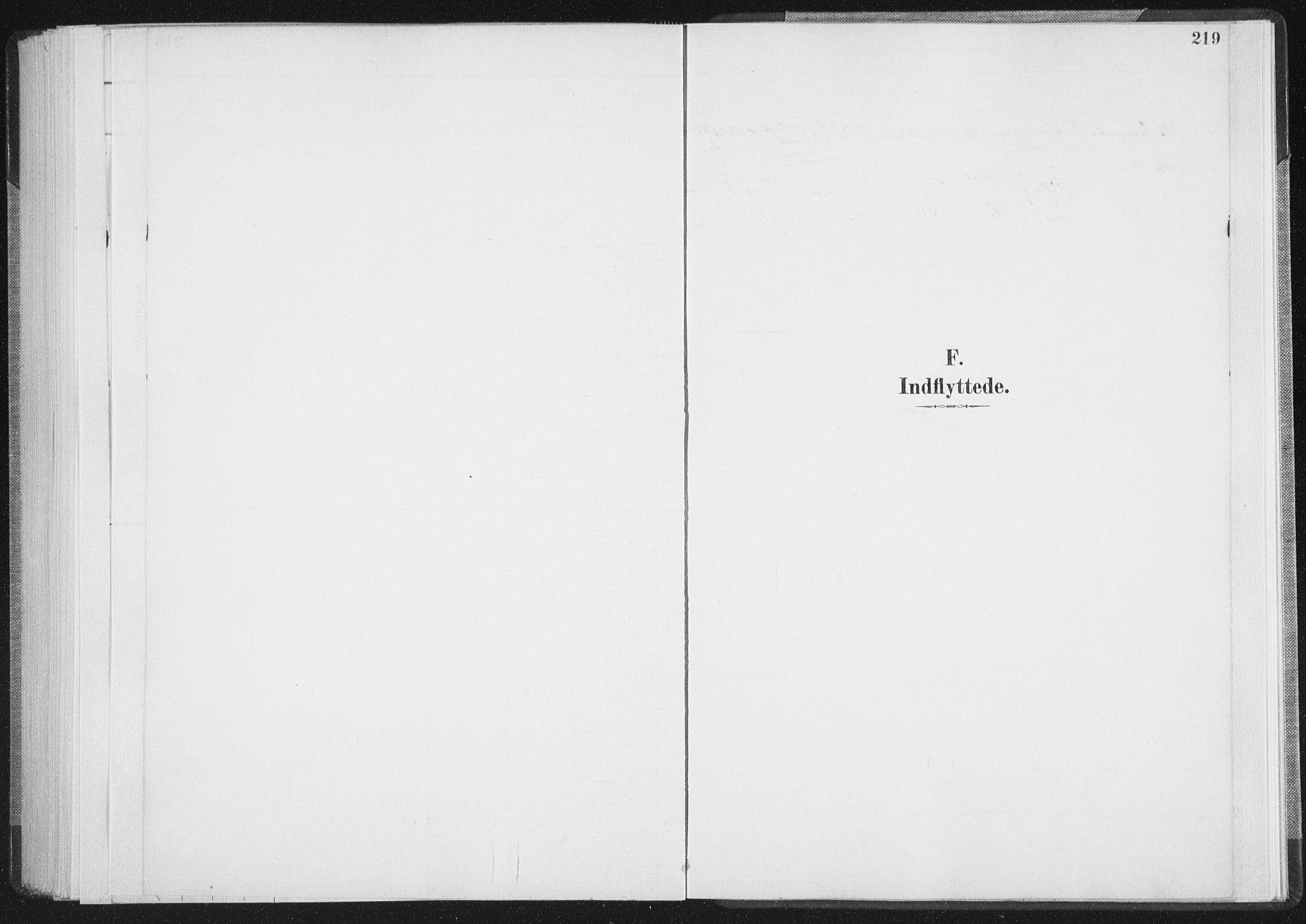 SAT, Ministerialprotokoller, klokkerbøker og fødselsregistre - Nordland, 898/L1422: Ministerialbok nr. 898A02, 1887-1908, s. 219