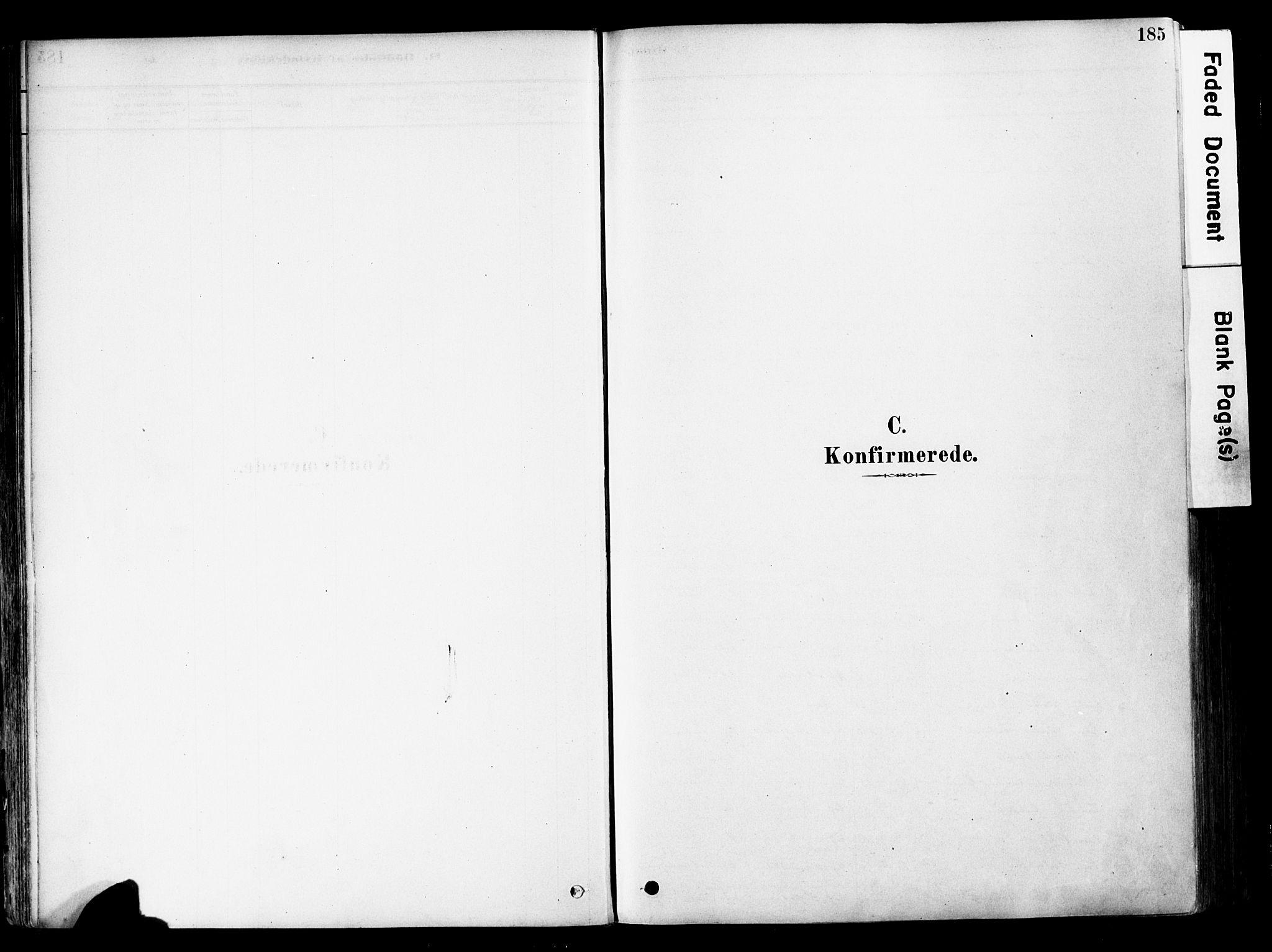 SAH, Østre Toten prestekontor, Ministerialbok nr. 6 /1, 1878-1896, s. 185