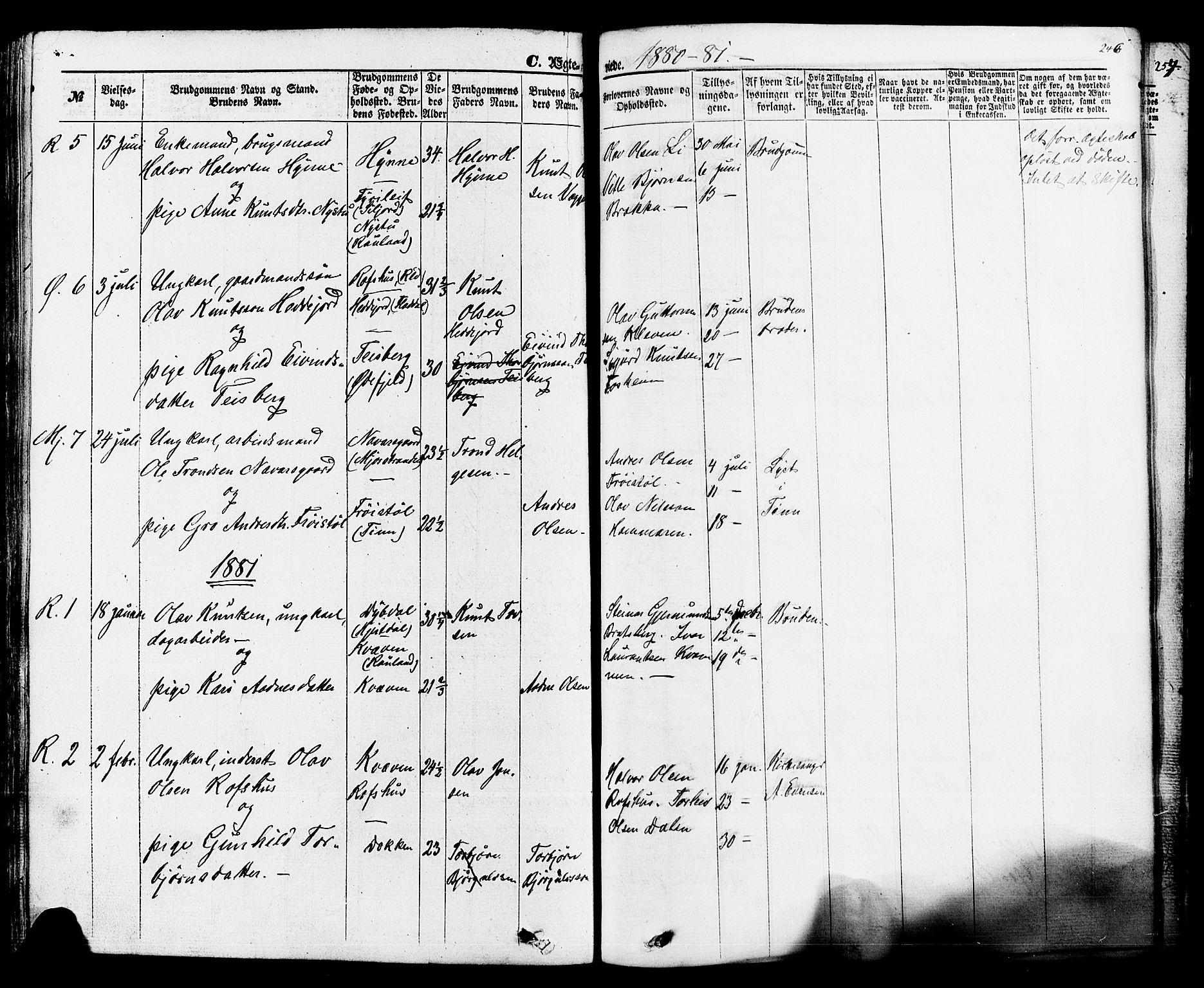 SAKO, Rauland kirkebøker, F/Fa/L0003: Ministerialbok nr. 3, 1859-1886, s. 246