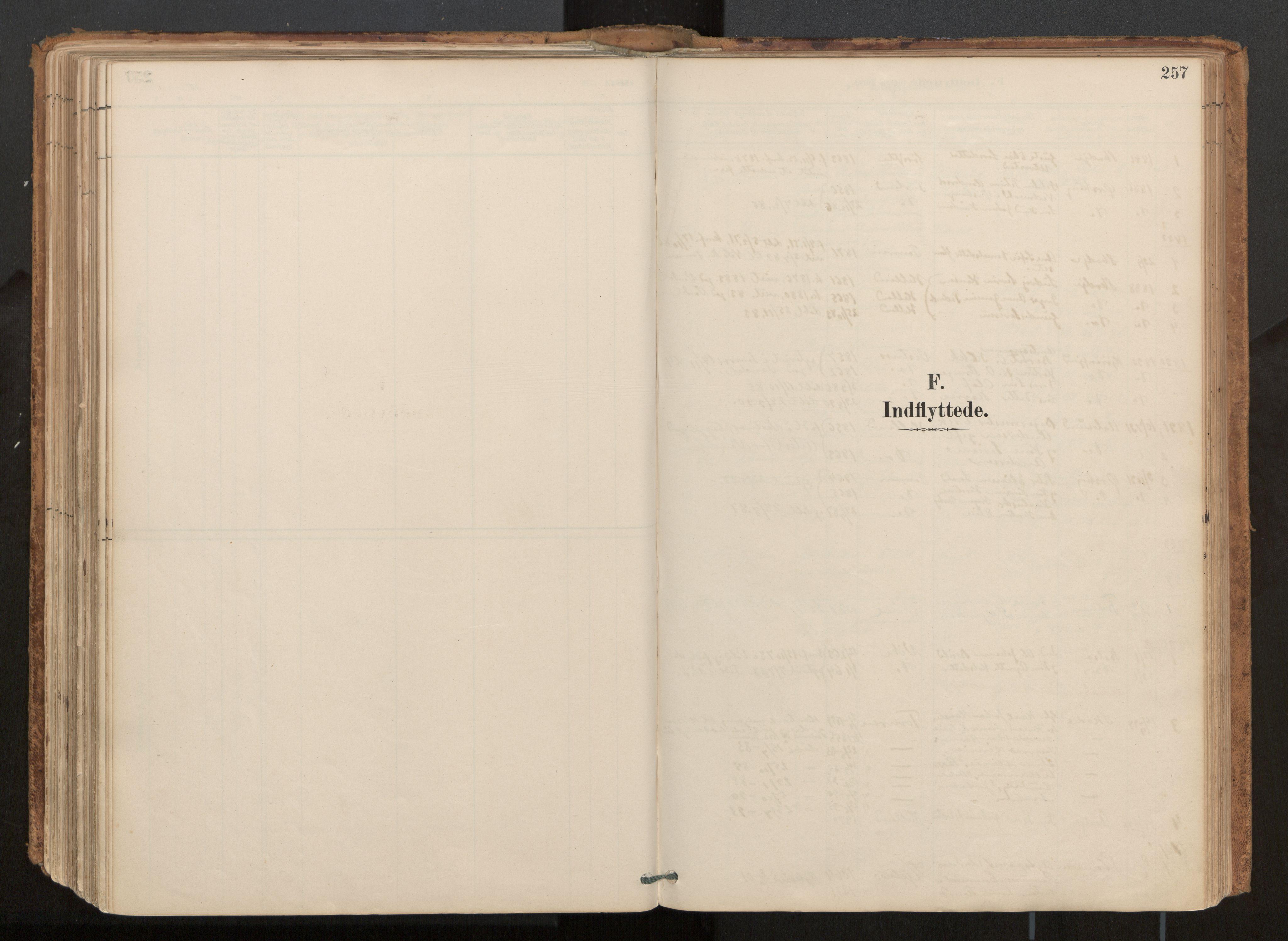 SAT, Ministerialprotokoller, klokkerbøker og fødselsregistre - Møre og Romsdal, 539/L0531: Ministerialbok nr. 539A04, 1887-1913, s. 257