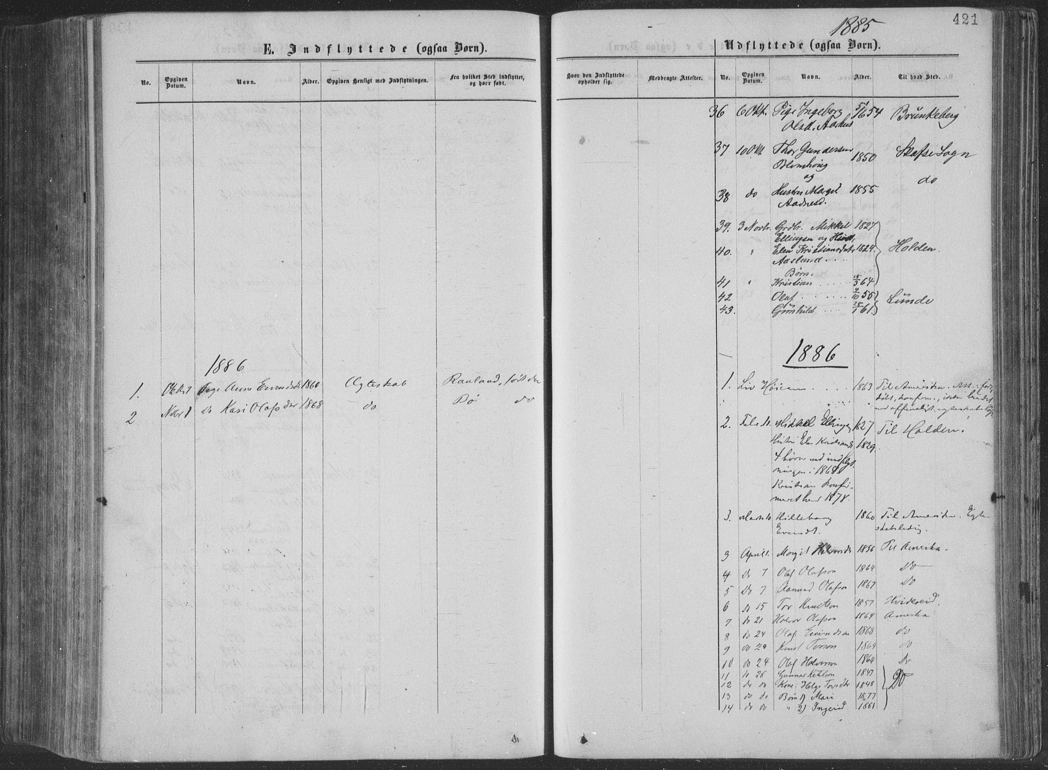 SAKO, Seljord kirkebøker, F/Fa/L0014: Ministerialbok nr. I 14, 1877-1886, s. 421