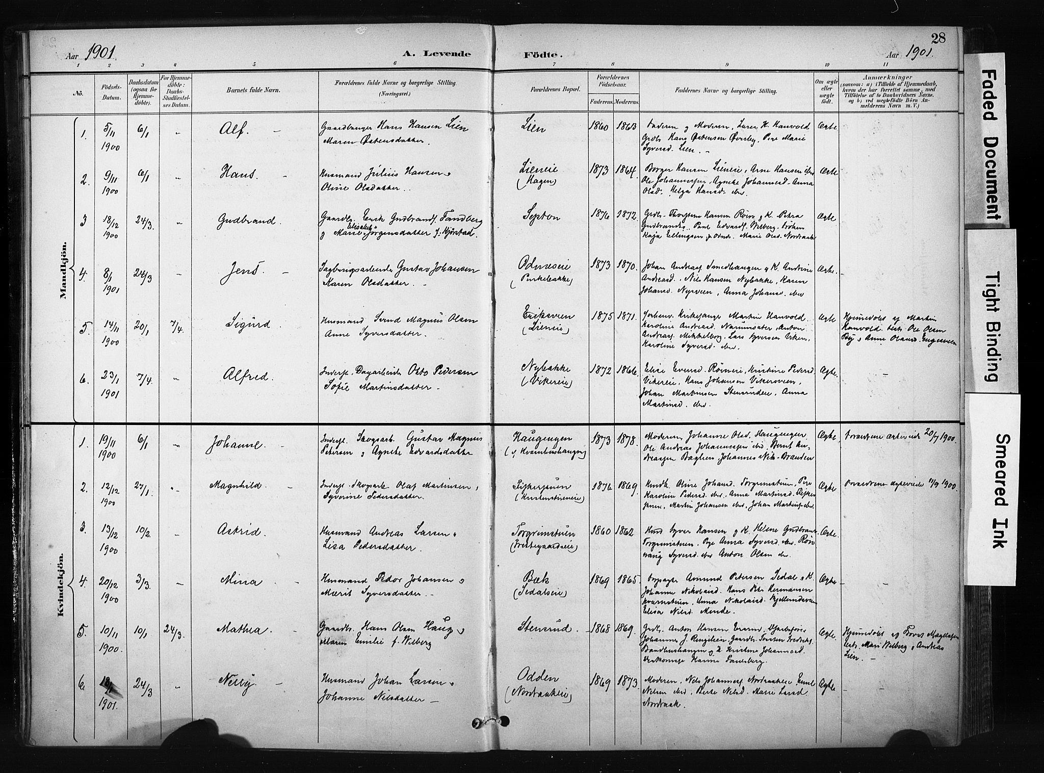 SAH, Søndre Land prestekontor, K/L0004: Ministerialbok nr. 4, 1895-1904, s. 28