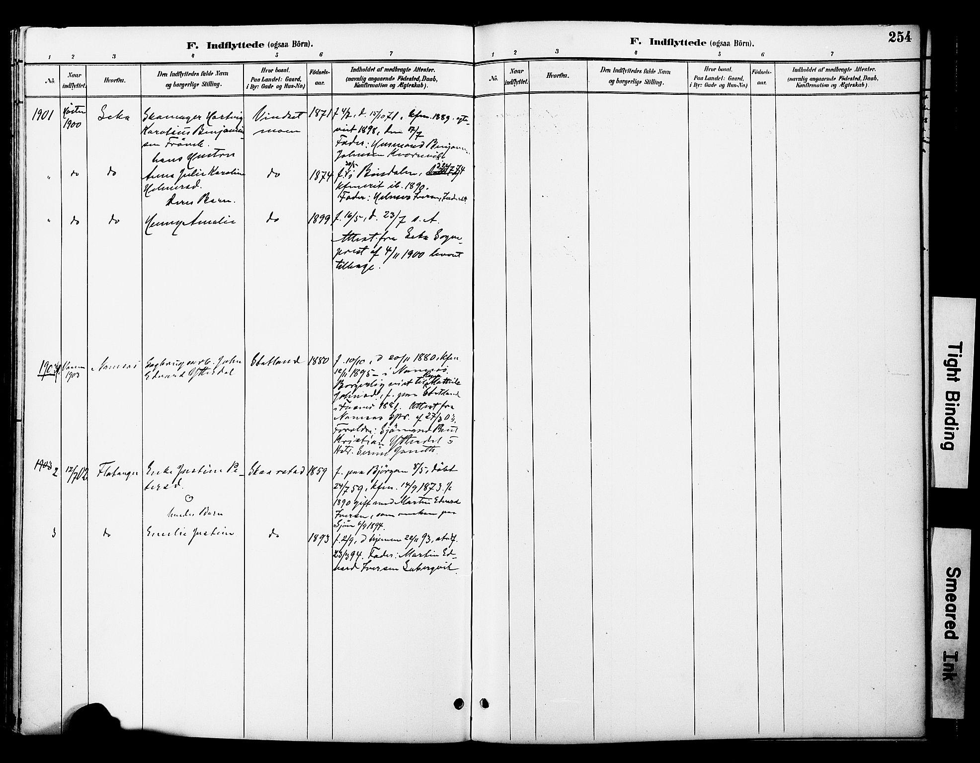 SAT, Ministerialprotokoller, klokkerbøker og fødselsregistre - Nord-Trøndelag, 774/L0628: Ministerialbok nr. 774A02, 1887-1903, s. 254