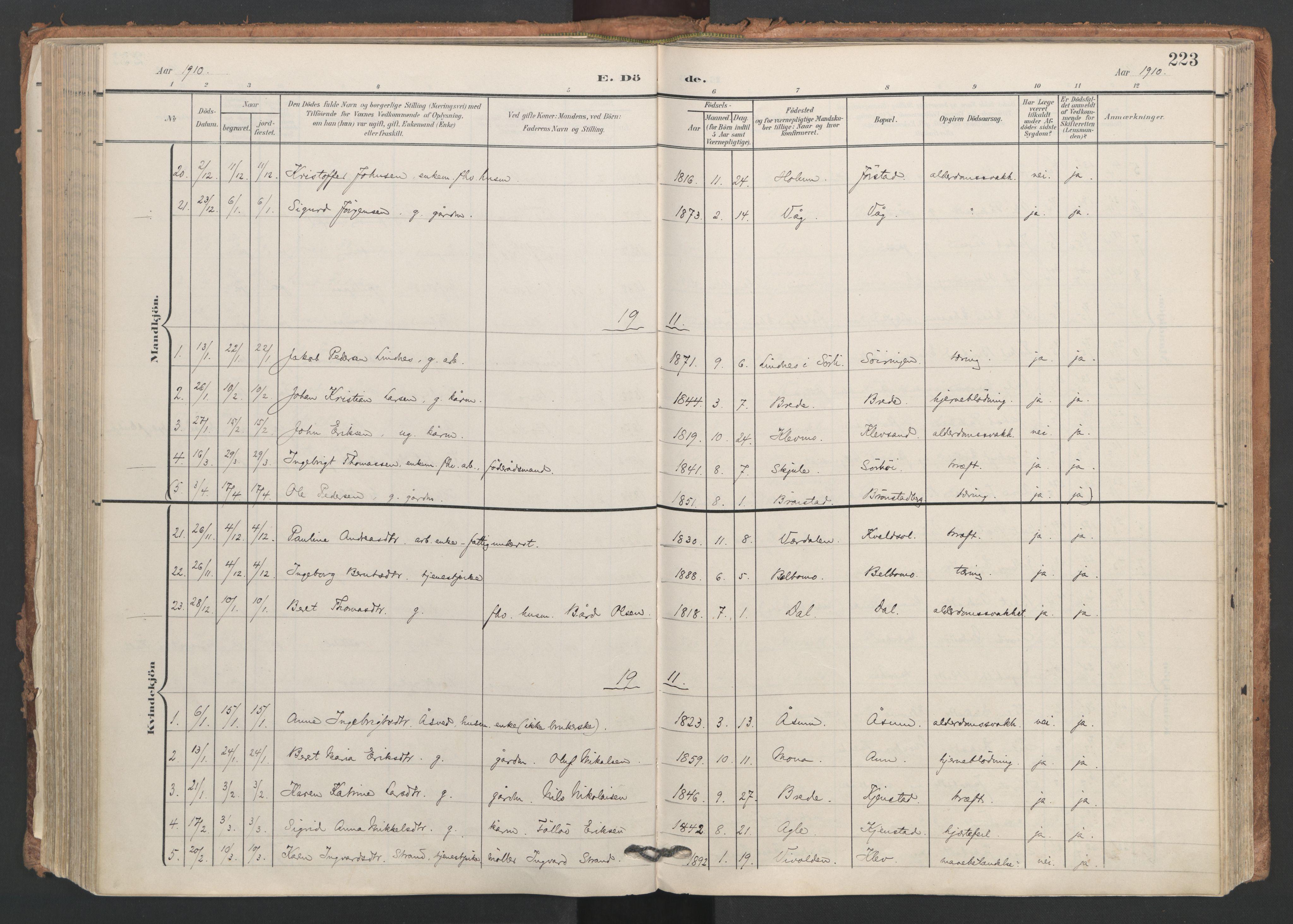 SAT, Ministerialprotokoller, klokkerbøker og fødselsregistre - Nord-Trøndelag, 749/L0477: Ministerialbok nr. 749A11, 1902-1927, s. 223