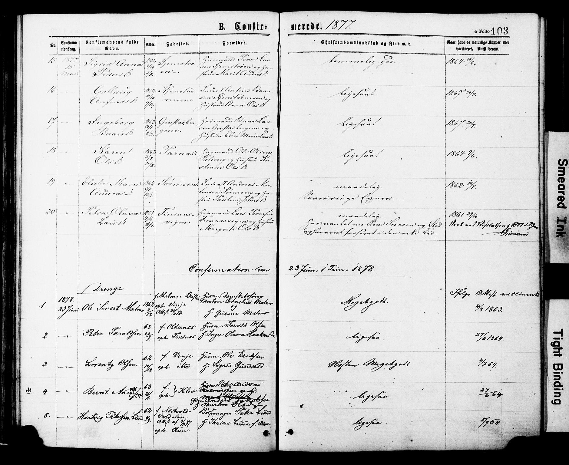 SAT, Ministerialprotokoller, klokkerbøker og fødselsregistre - Nord-Trøndelag, 749/L0473: Ministerialbok nr. 749A07, 1873-1887, s. 103