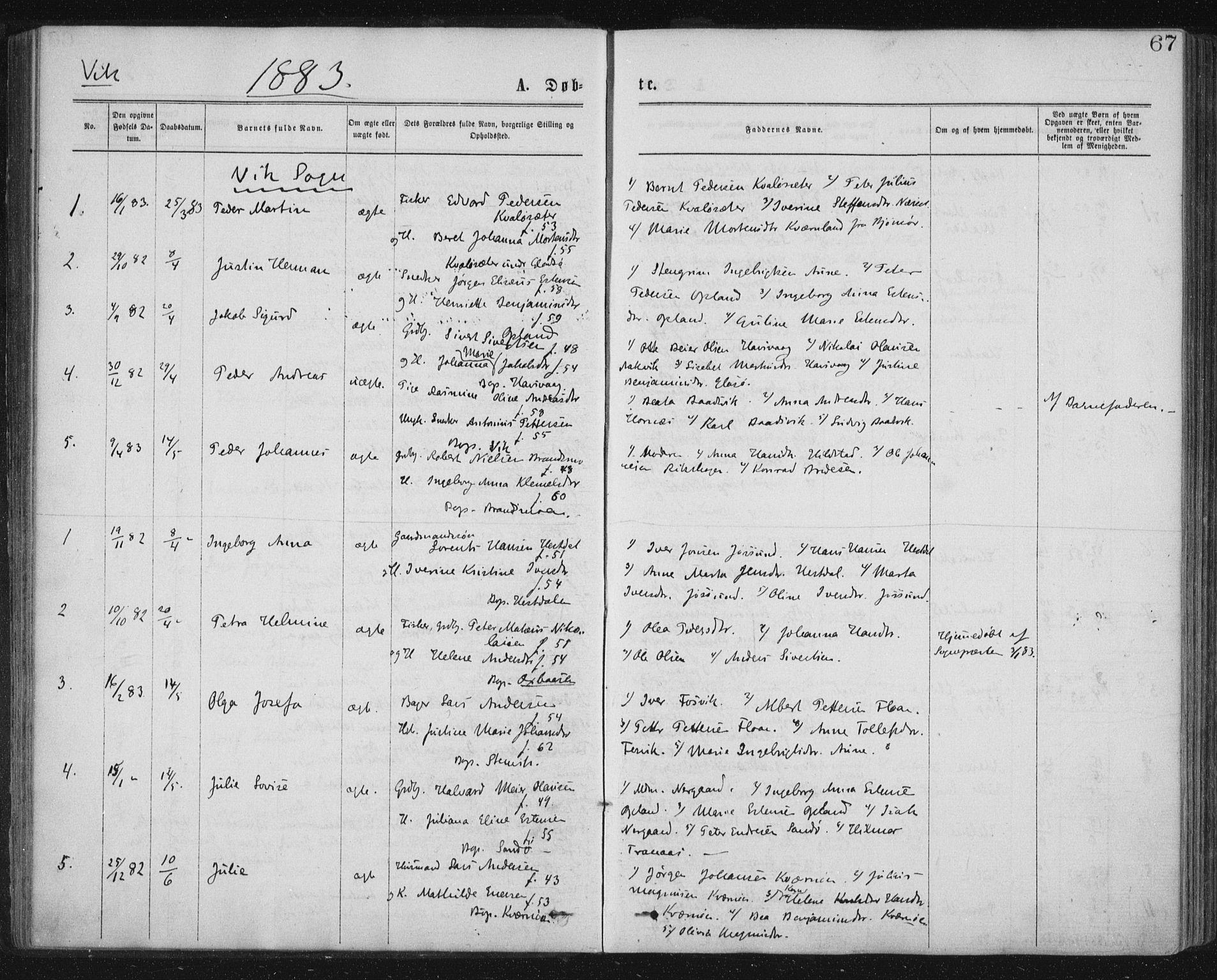 SAT, Ministerialprotokoller, klokkerbøker og fødselsregistre - Nord-Trøndelag, 771/L0596: Ministerialbok nr. 771A03, 1870-1884, s. 67