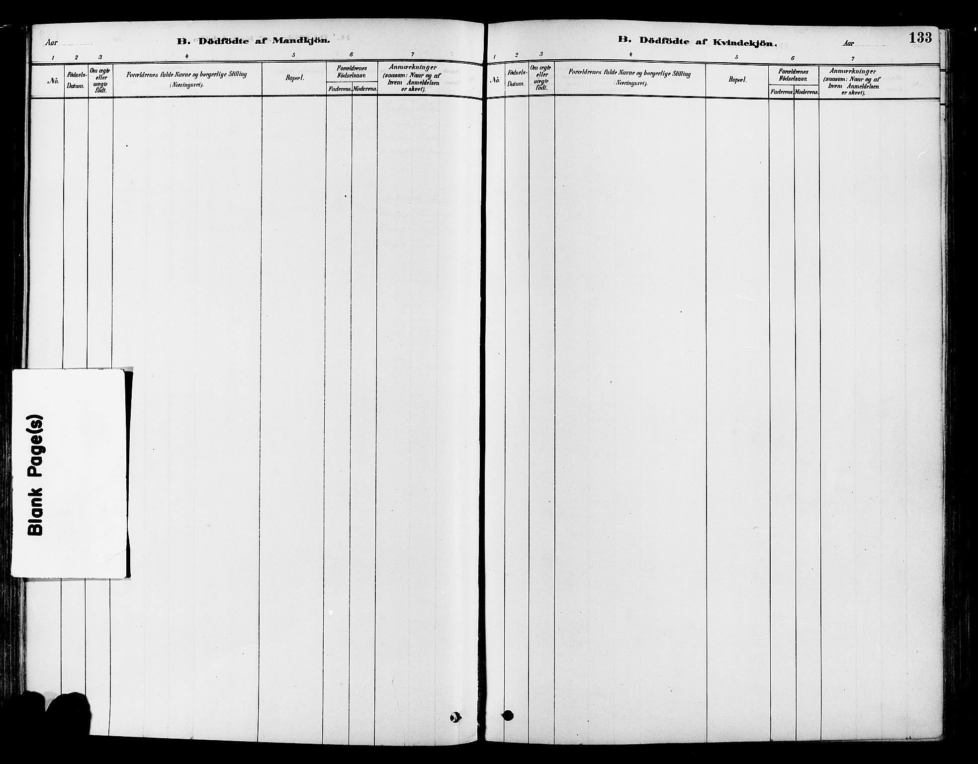 SAH, Vestre Toten prestekontor, Ministerialbok nr. 9, 1878-1894, s. 133