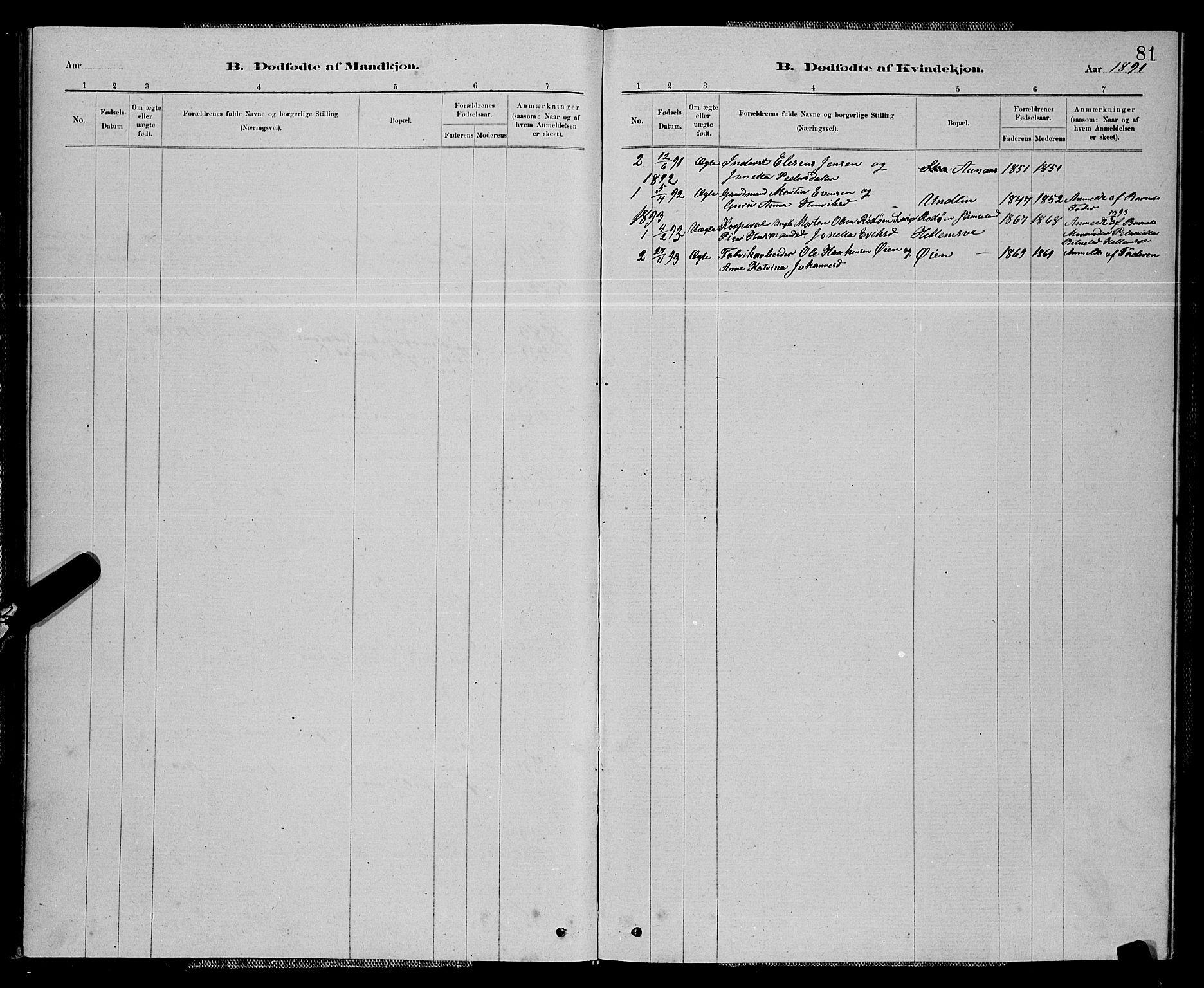 SAT, Ministerialprotokoller, klokkerbøker og fødselsregistre - Nord-Trøndelag, 714/L0134: Klokkerbok nr. 714C03, 1878-1898, s. 81