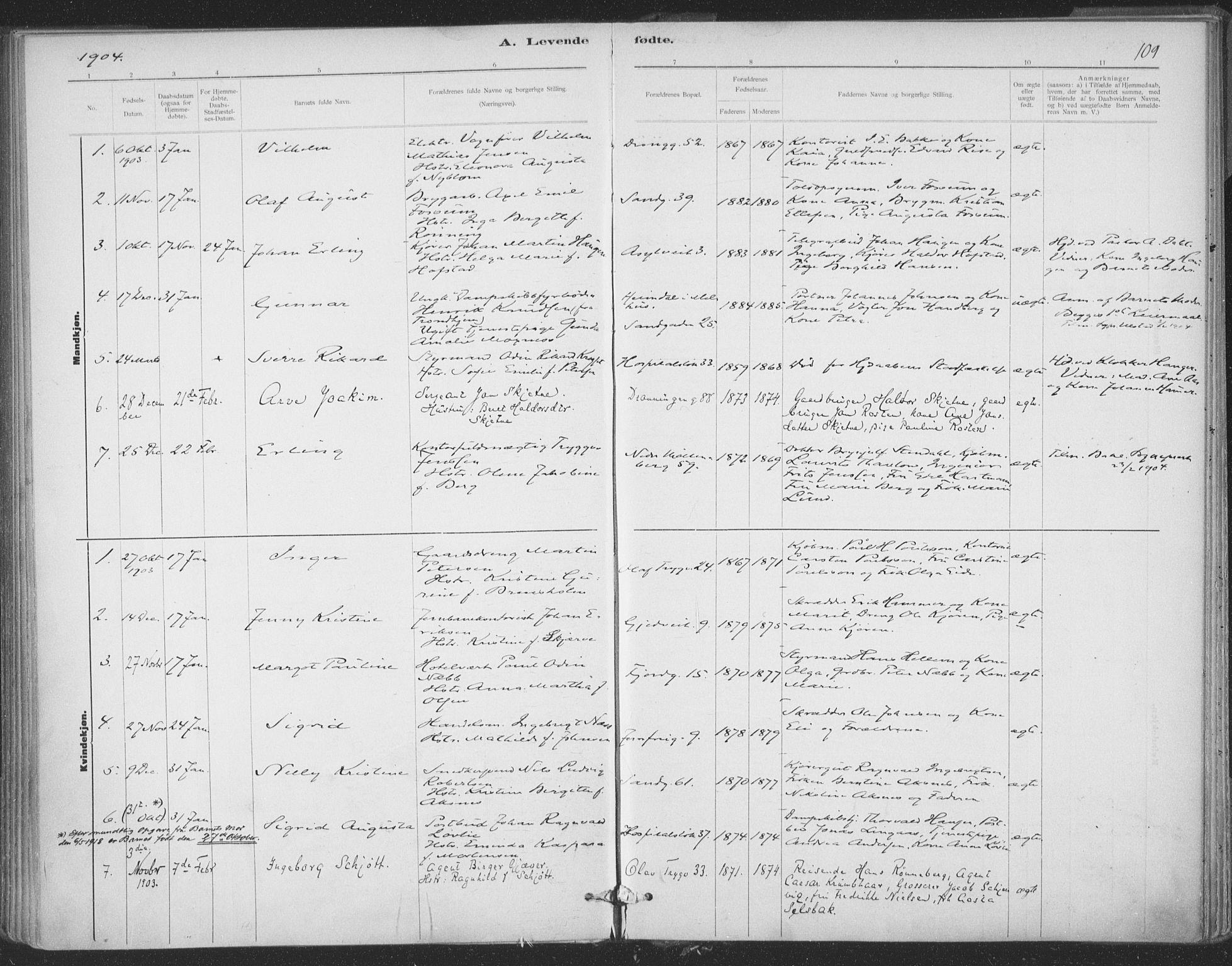 SAT, Ministerialprotokoller, klokkerbøker og fødselsregistre - Sør-Trøndelag, 602/L0122: Ministerialbok nr. 602A20, 1892-1908, s. 109