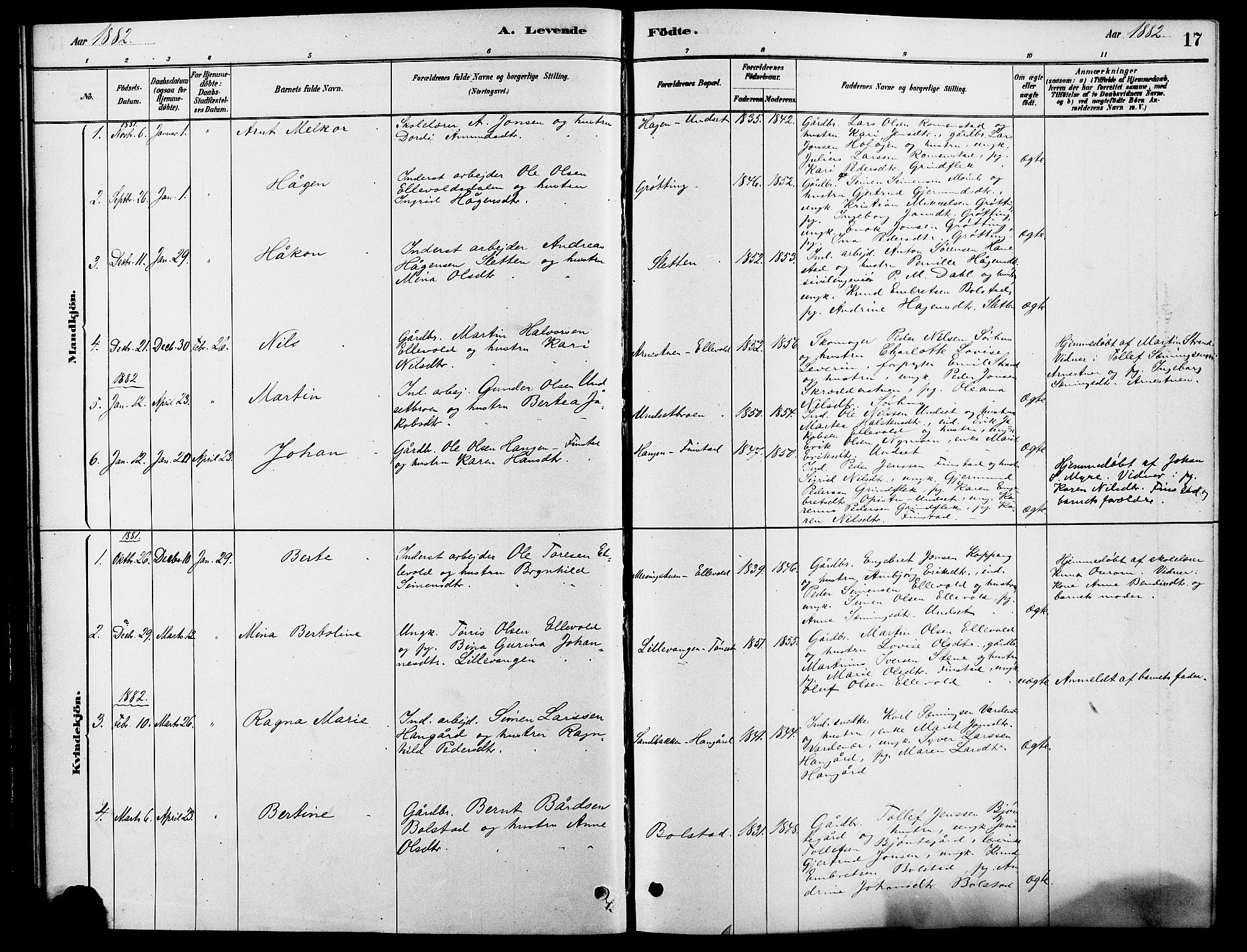 SAH, Rendalen prestekontor, H/Ha/Hab/L0003: Klokkerbok nr. 3, 1879-1904, s. 17