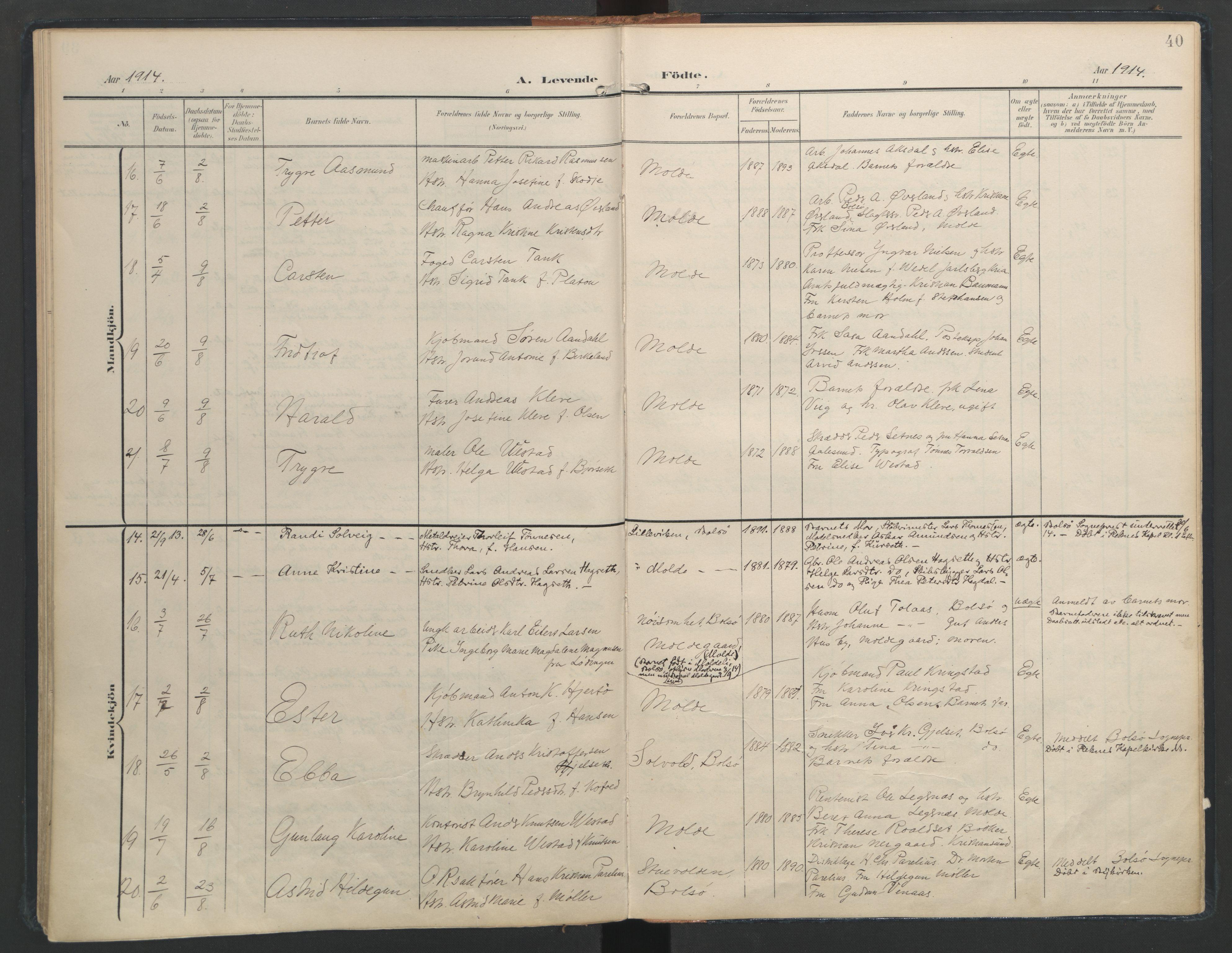 SAT, Ministerialprotokoller, klokkerbøker og fødselsregistre - Møre og Romsdal, 558/L0693: Ministerialbok nr. 558A07, 1903-1917, s. 40