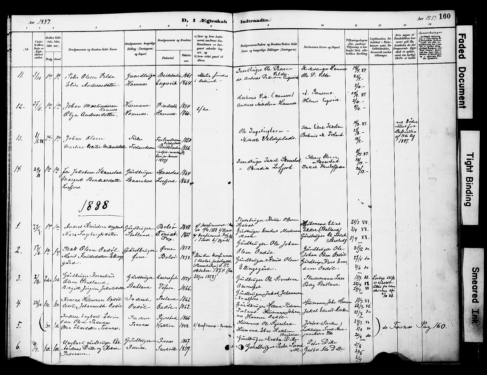 SAT, Ministerialprotokoller, klokkerbøker og fødselsregistre - Nord-Trøndelag, 774/L0628: Ministerialbok nr. 774A02, 1887-1903, s. 160
