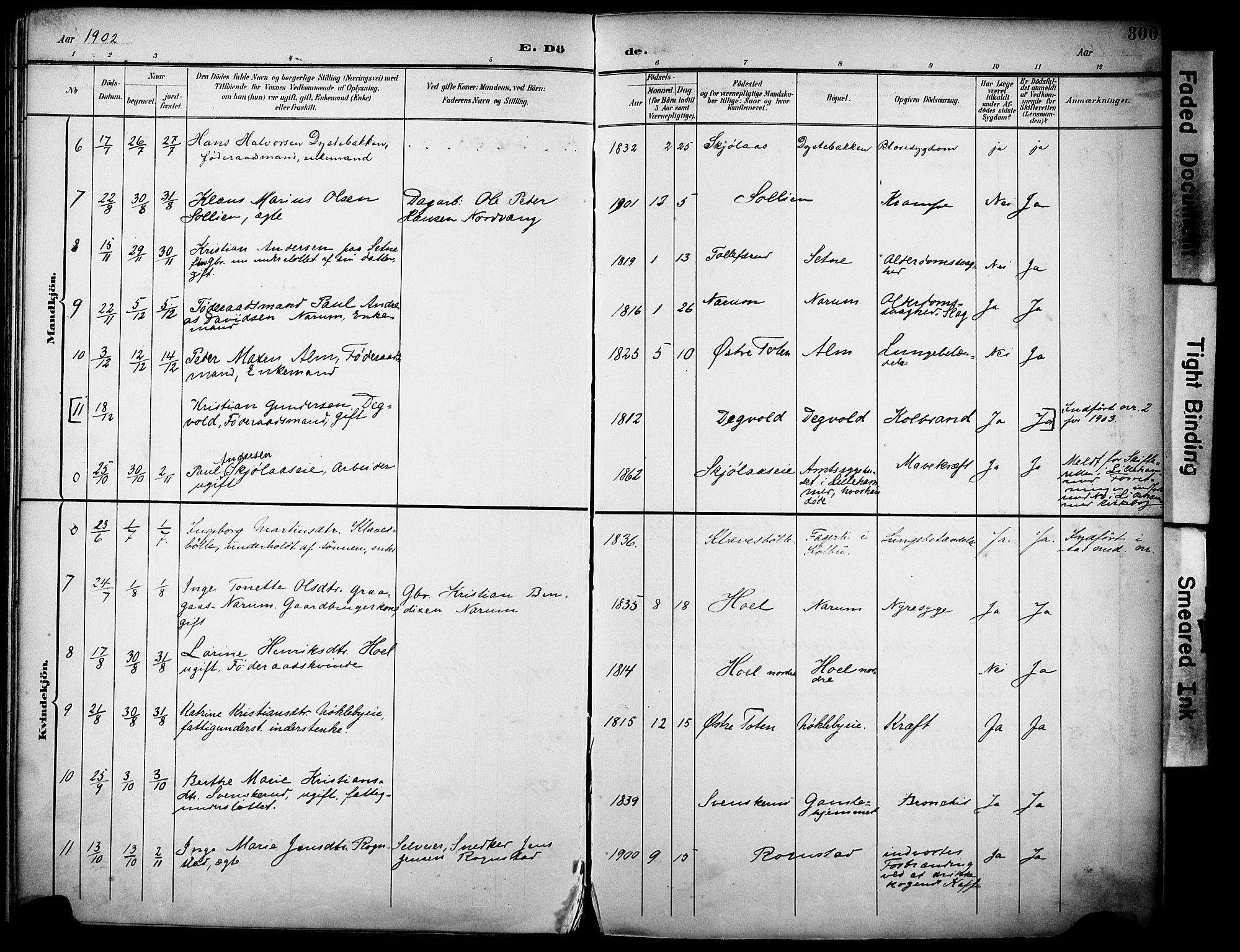 SAH, Vestre Toten prestekontor, H/Ha/Haa/L0013: Ministerialbok nr. 13, 1895-1911, s. 300