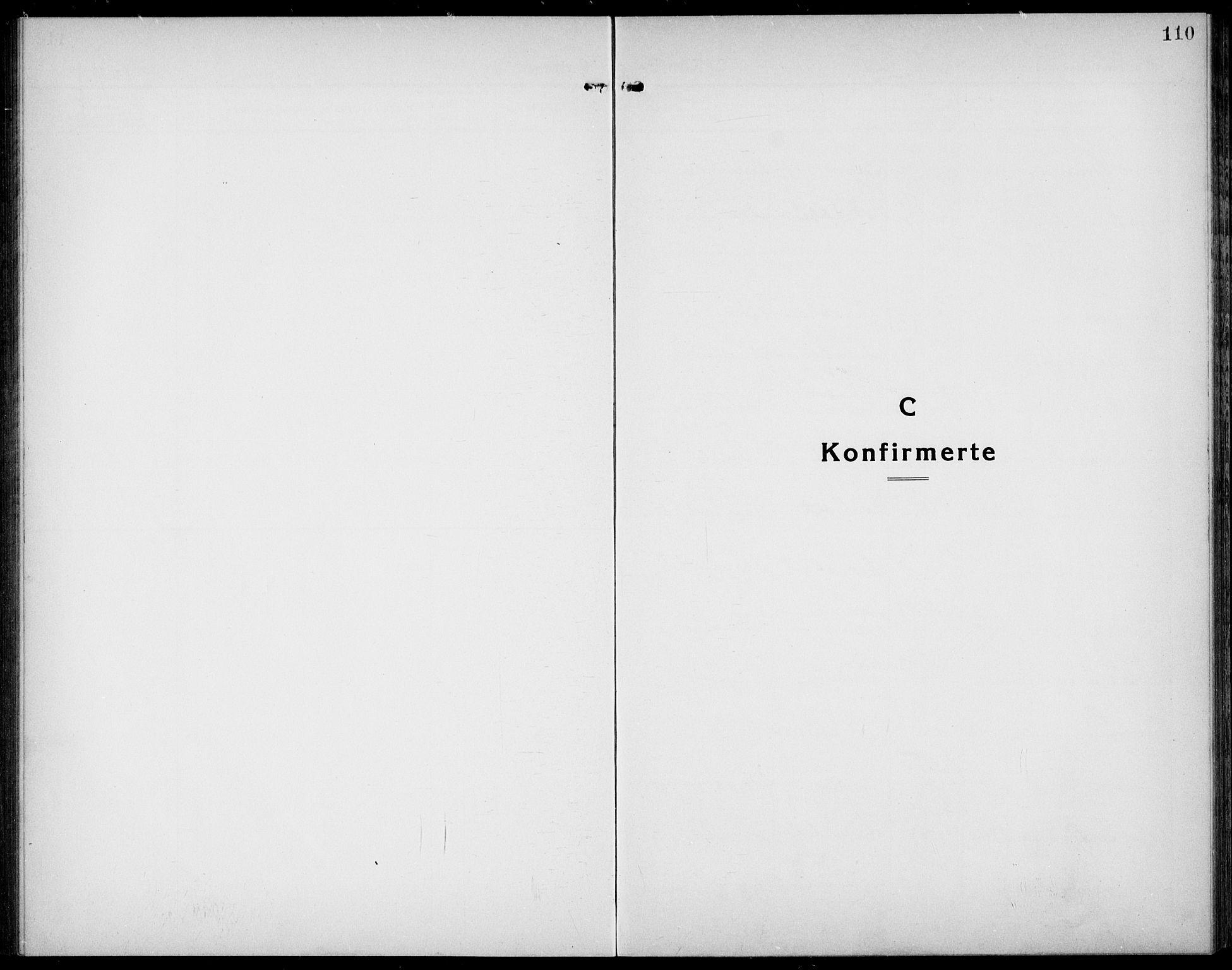 SAKO, Bamble kirkebøker, G/Ga/L0011: Klokkerbok nr. I 11, 1920-1935, s. 110