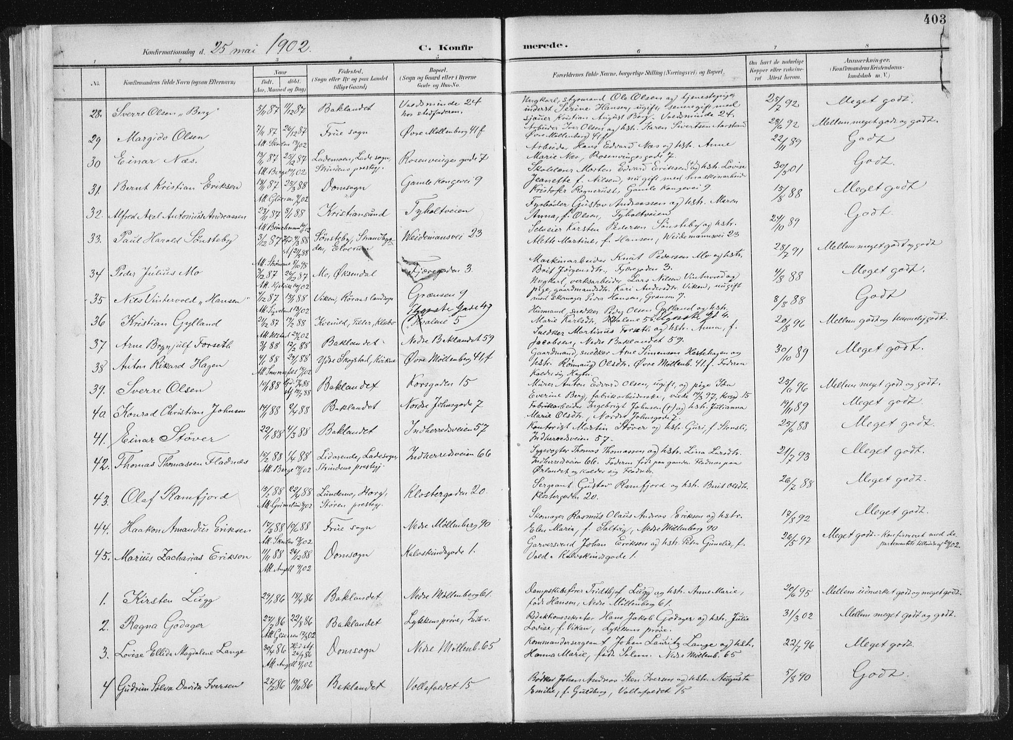 SAT, Ministerialprotokoller, klokkerbøker og fødselsregistre - Sør-Trøndelag, 604/L0200: Ministerialbok nr. 604A20II, 1901-1908, s. 403