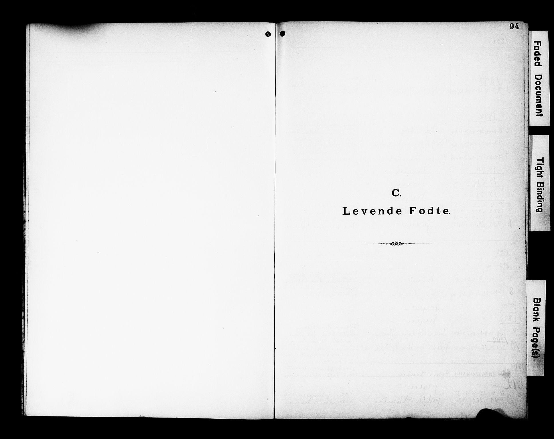 SAK, Den katolsk-apostoliske menighet, Kristiansand, F/Fa/L0002: Dissenterprotokoll nr. 2, 1896-1925, s. 94