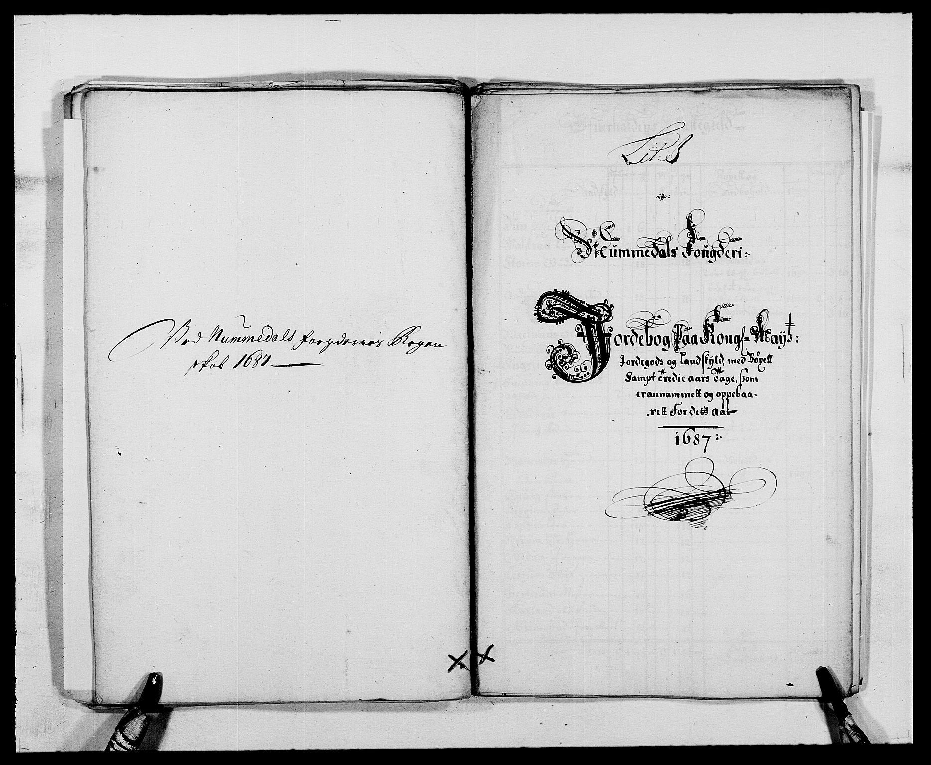 RA, Rentekammeret inntil 1814, Reviderte regnskaper, Fogderegnskap, R64/L4422: Fogderegnskap Namdal, 1687-1689, s. 48