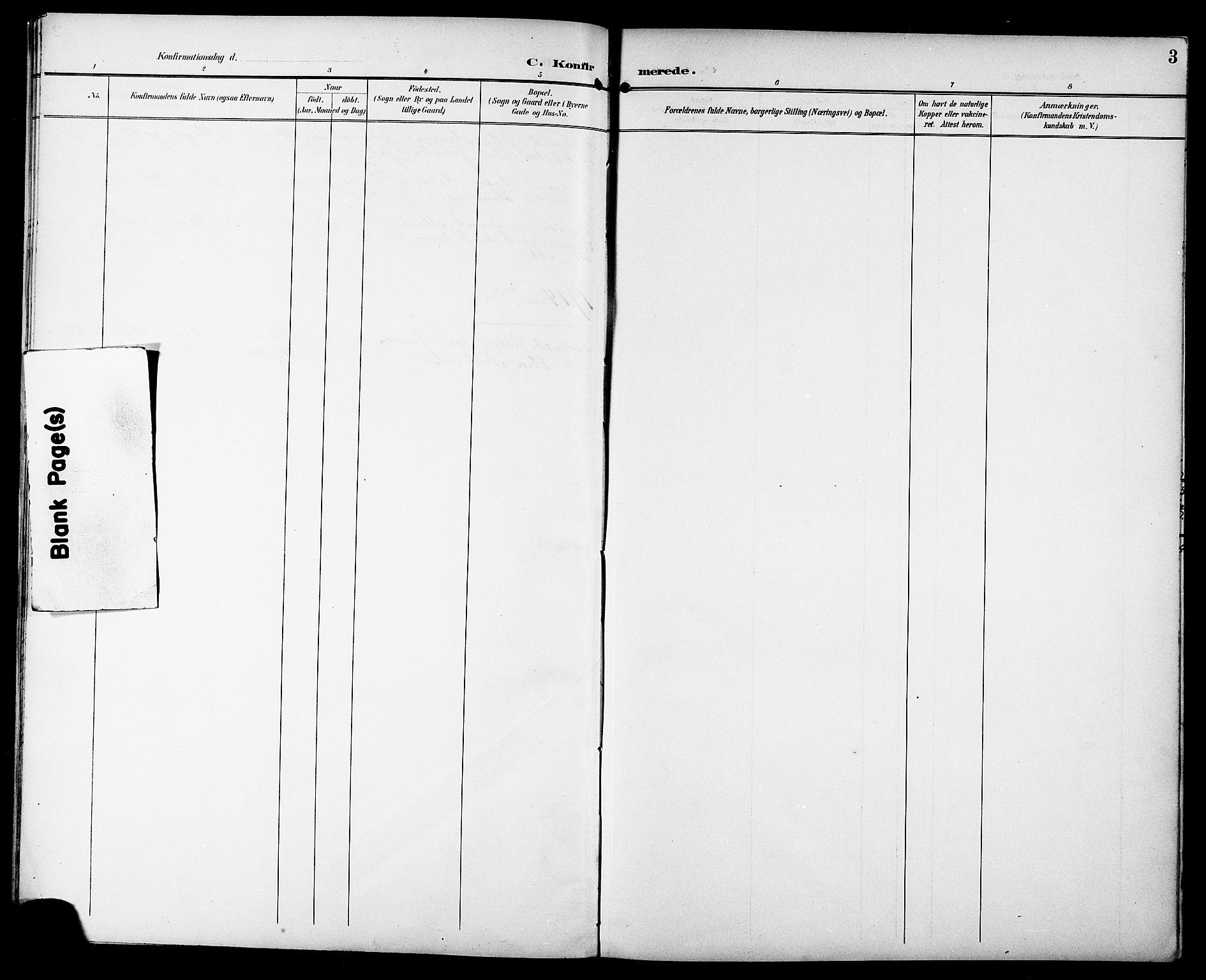 SAT, Ministerialprotokoller, klokkerbøker og fødselsregistre - Sør-Trøndelag, 629/L0486: Ministerialbok nr. 629A02, 1894-1919, s. 3