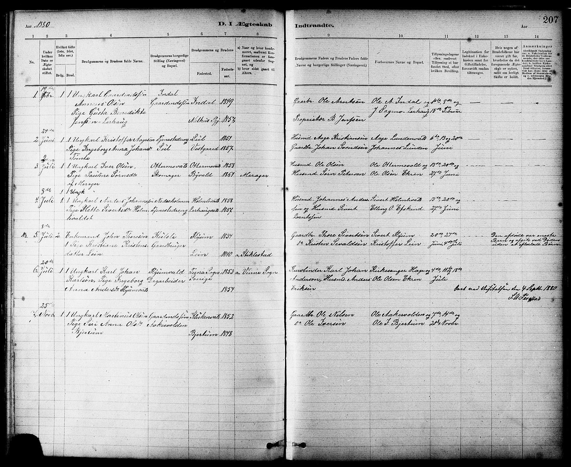 SAT, Ministerialprotokoller, klokkerbøker og fødselsregistre - Nord-Trøndelag, 724/L0267: Klokkerbok nr. 724C03, 1879-1898, s. 207