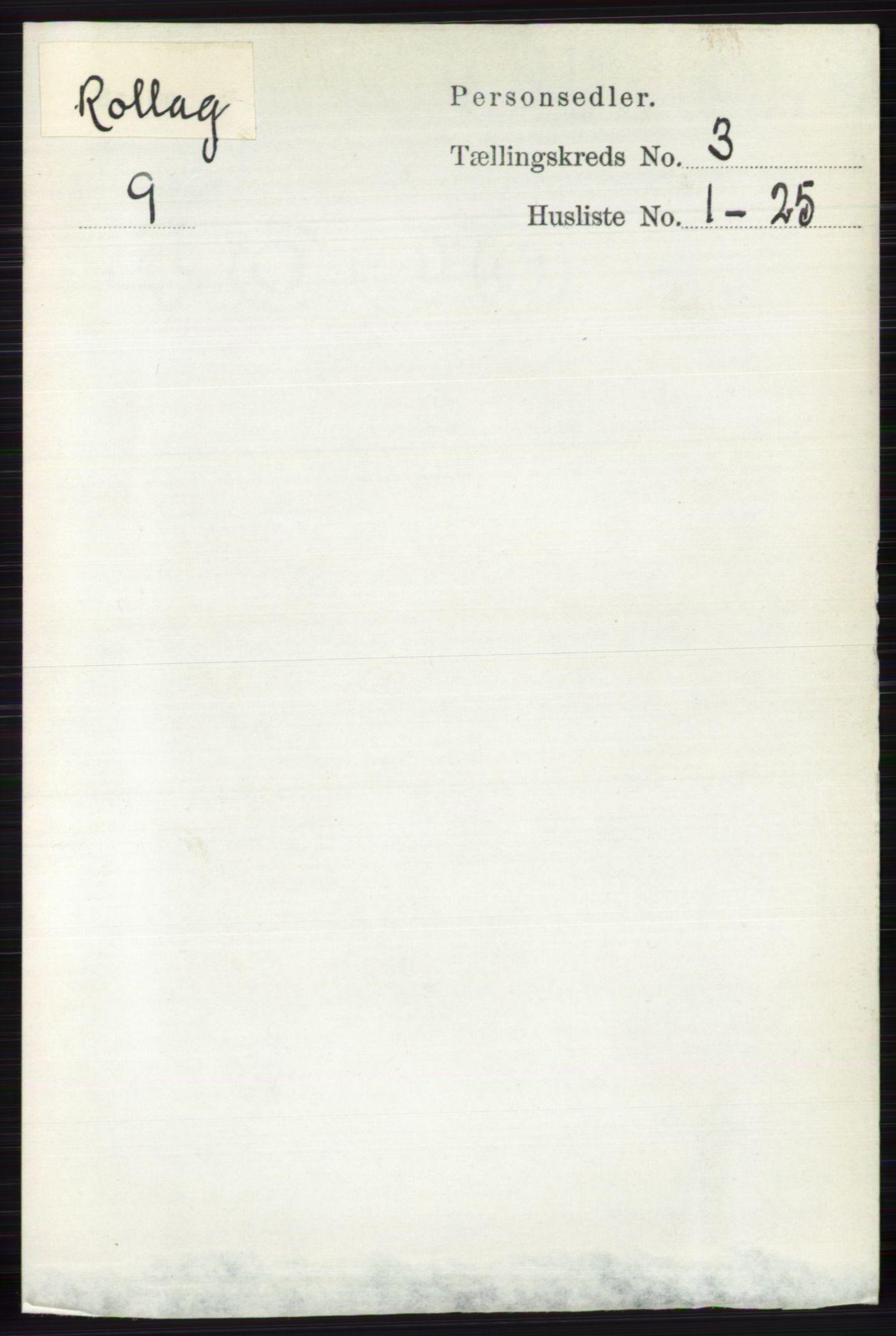 RA, Folketelling 1891 for 0632 Rollag herred, 1891, s. 920