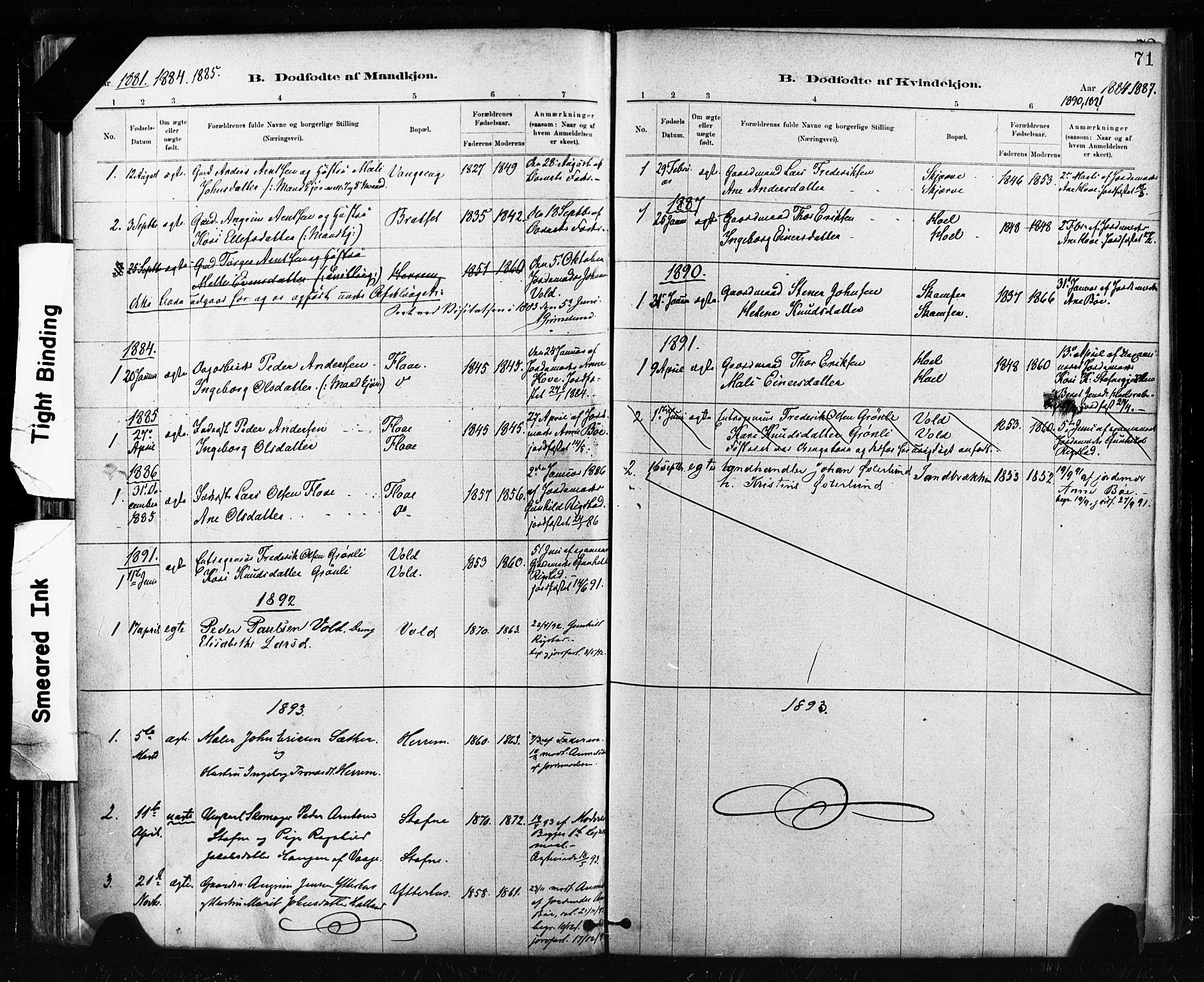SAT, Ministerialprotokoller, klokkerbøker og fødselsregistre - Sør-Trøndelag, 674/L0871: Ministerialbok nr. 674A03, 1880-1896, s. 71