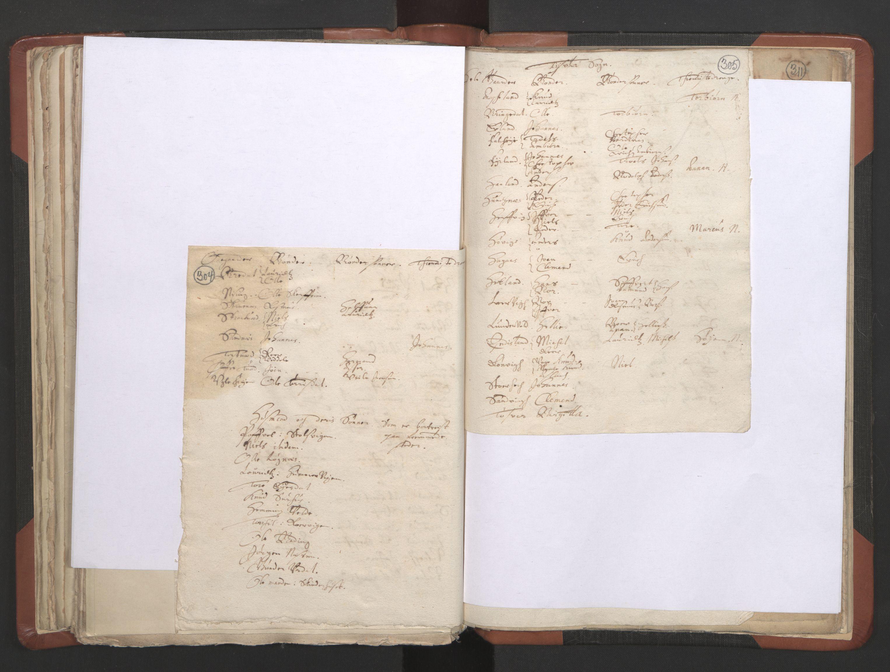 RA, Sogneprestenes manntall 1664-1666, nr. 19: Ryfylke prosti, 1664-1666, s. 304-305