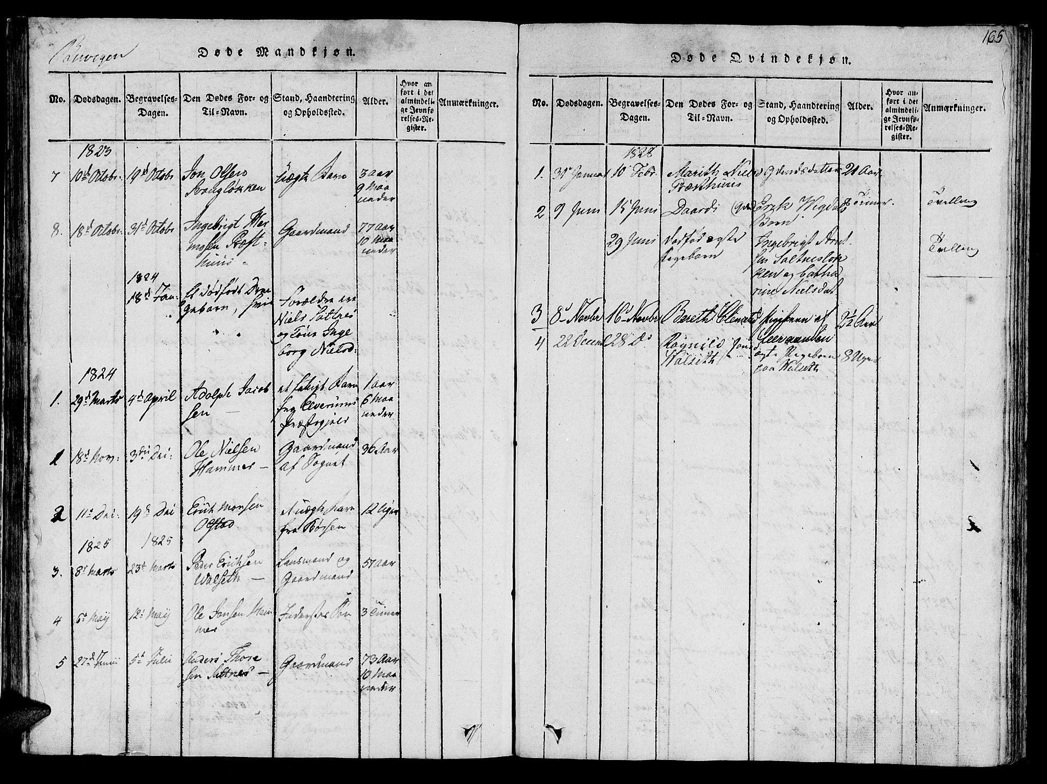 SAT, Ministerialprotokoller, klokkerbøker og fødselsregistre - Sør-Trøndelag, 612/L0373: Ministerialbok nr. 612A06 /2, 1816-1828, s. 165