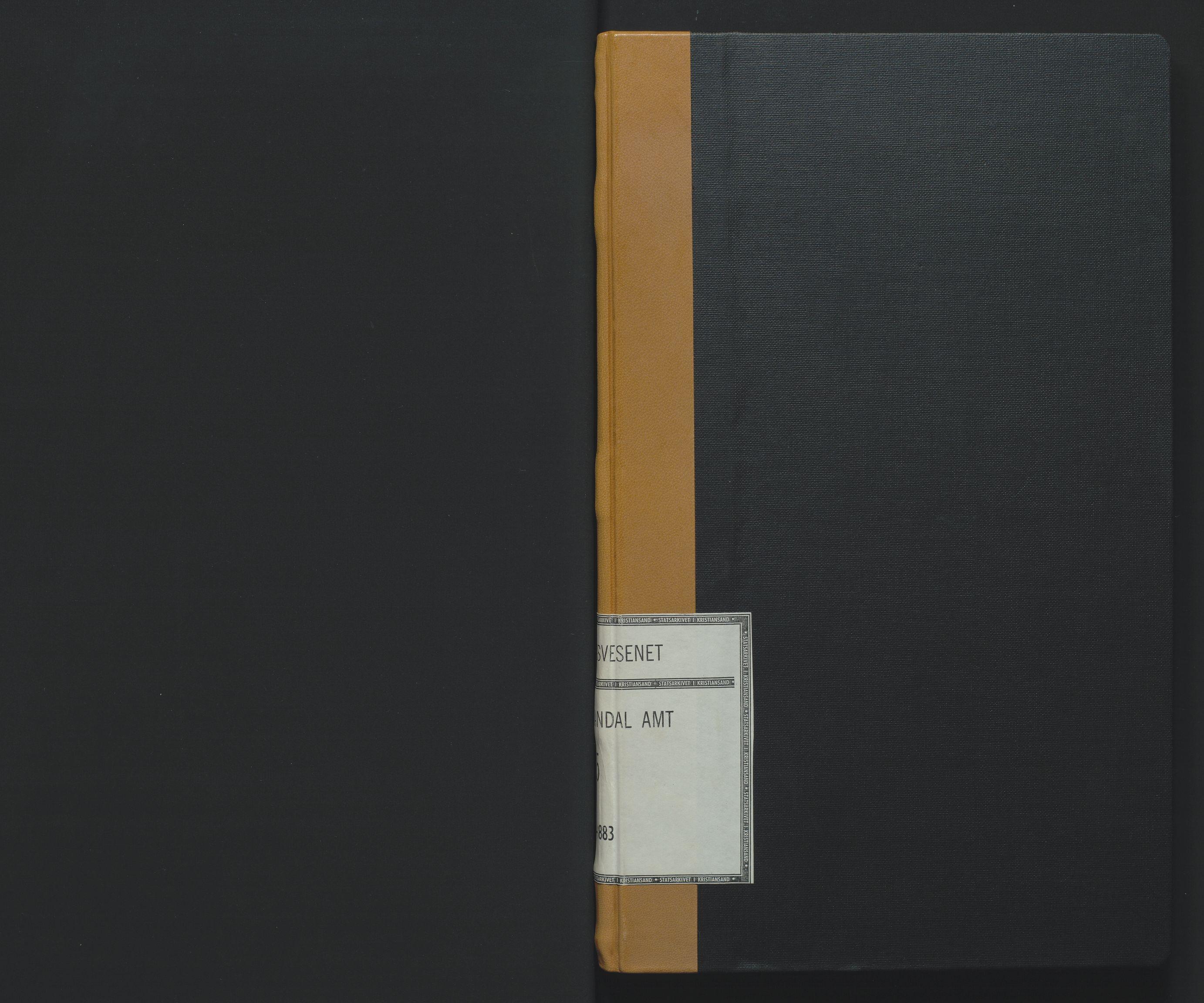 SAK, Utskiftningsformannen i Lister og Mandal amt, F/Fa/Faa/L0015: Utskiftningsprotokoll med register nr 15, 1880-1883