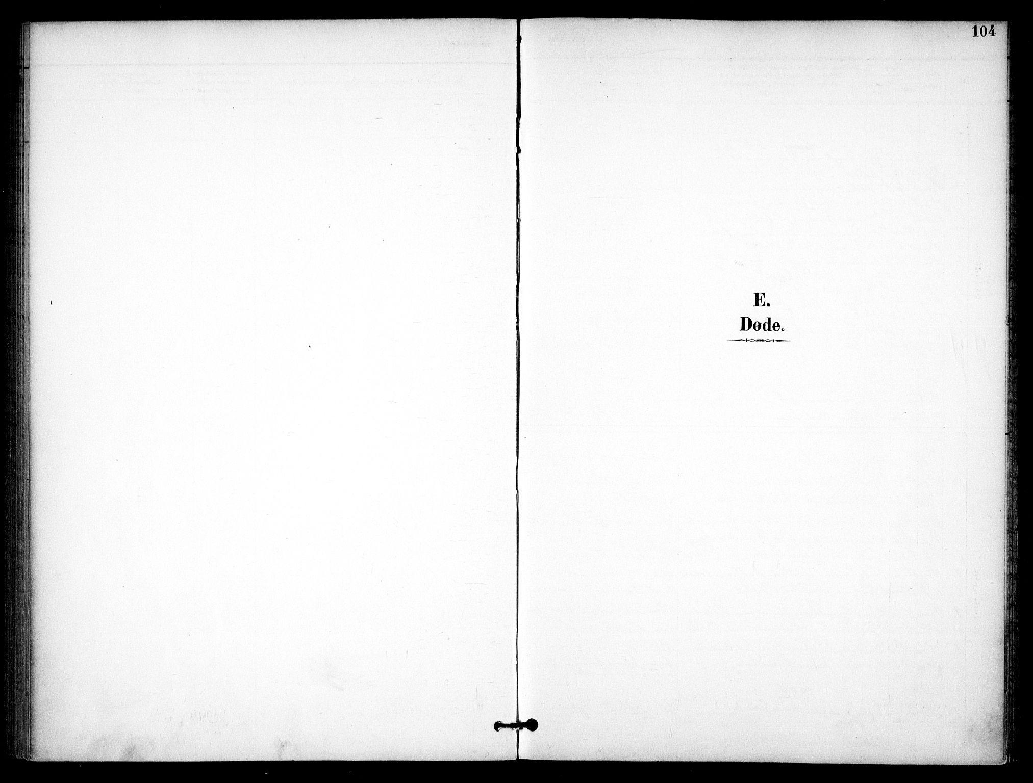 SAO, Nannestad prestekontor Kirkebøker, F/Fb/L0002: Ministerialbok nr. II 2, 1891-1909, s. 104
