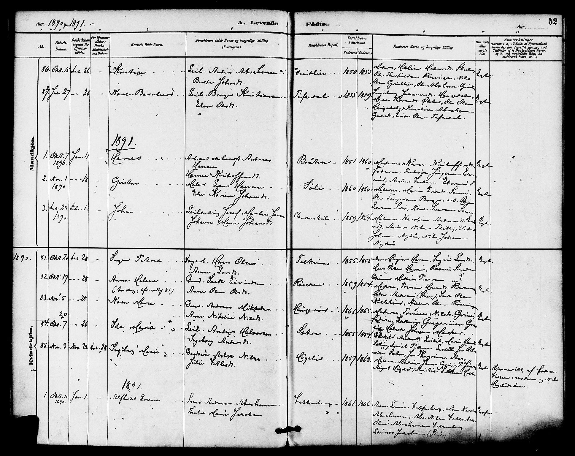 SAKO, Gjerpen kirkebøker, F/Fa/L0010: Ministerialbok nr. 10, 1886-1895, s. 52