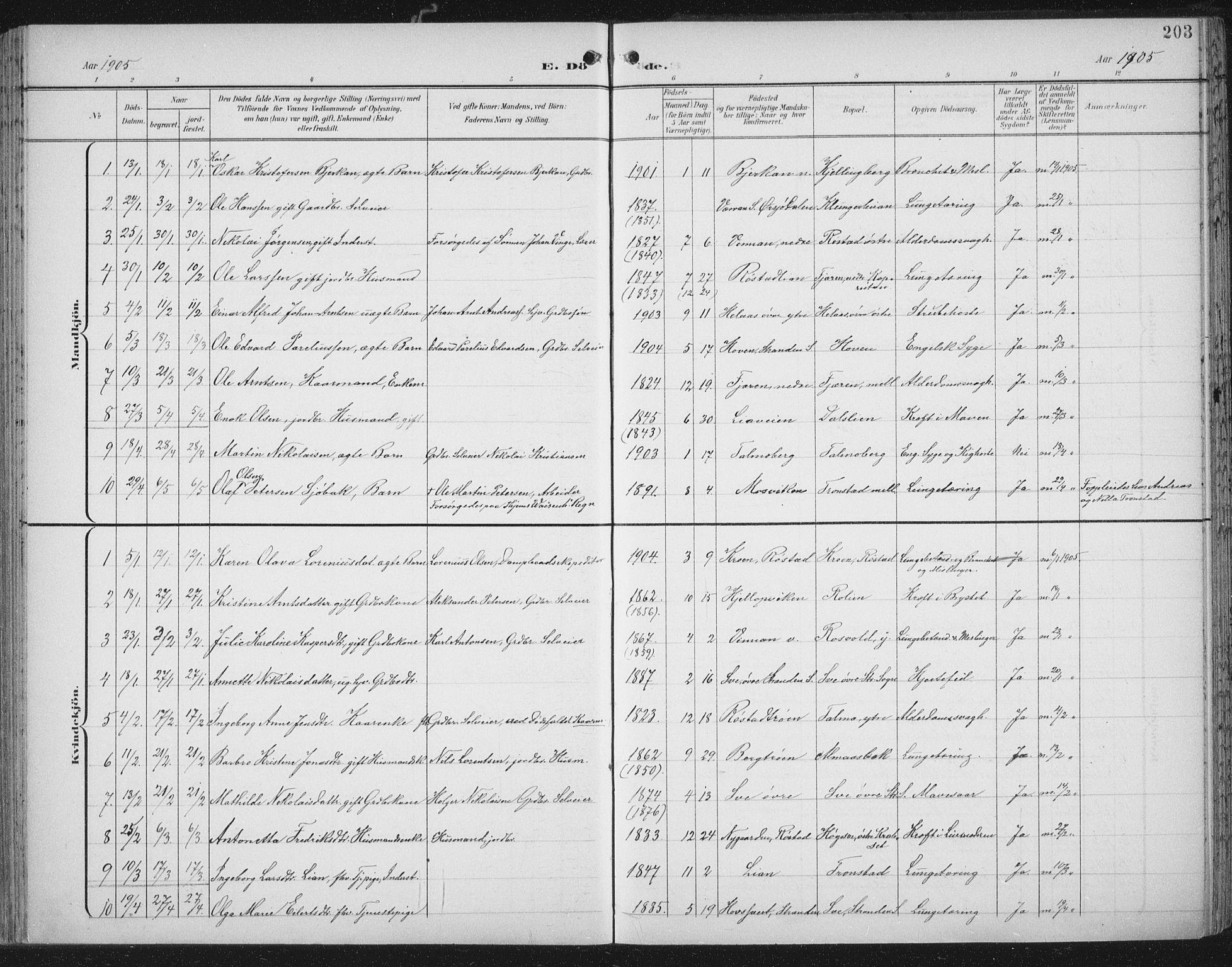 SAT, Ministerialprotokoller, klokkerbøker og fødselsregistre - Nord-Trøndelag, 701/L0011: Ministerialbok nr. 701A11, 1899-1915, s. 203