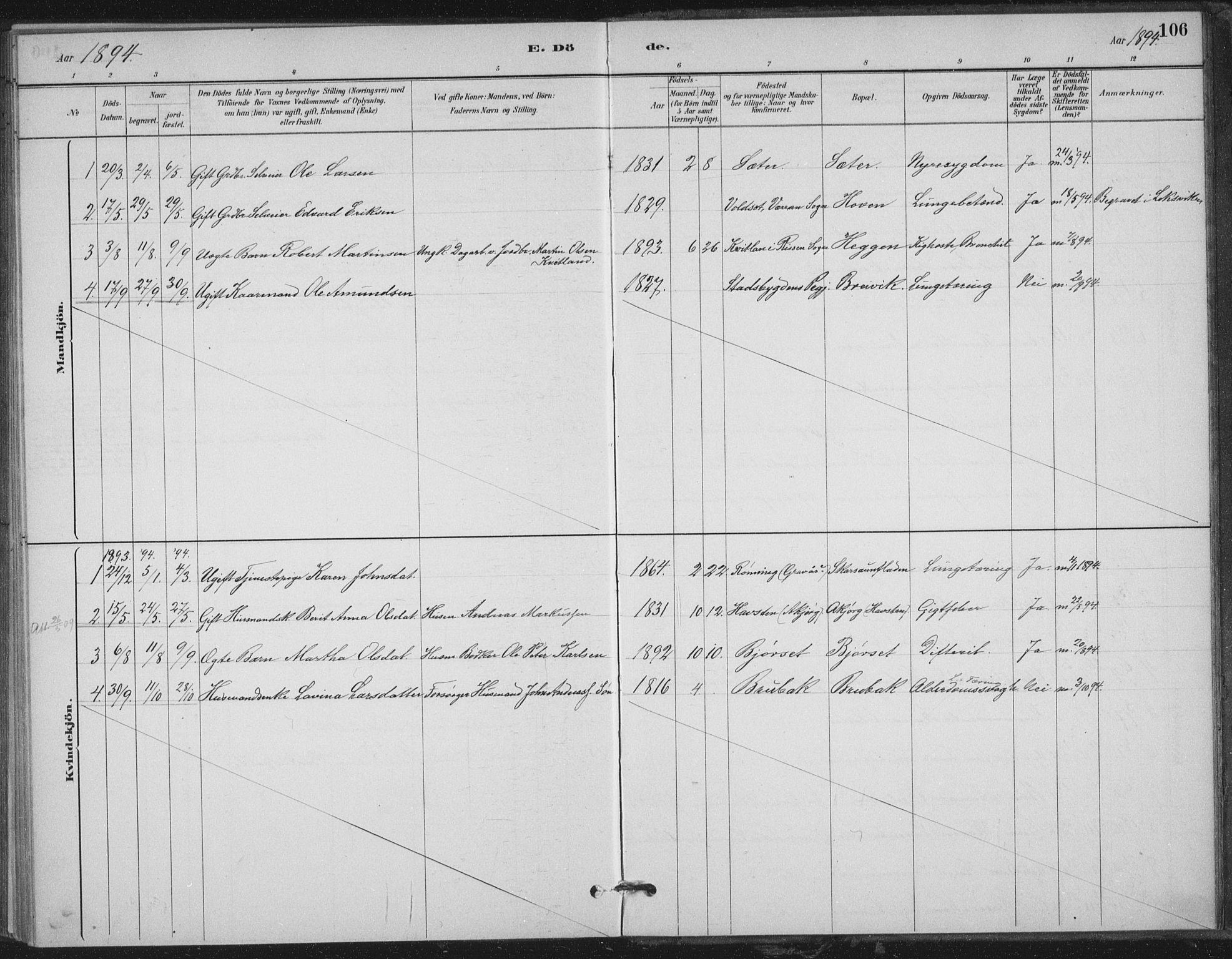 SAT, Ministerialprotokoller, klokkerbøker og fødselsregistre - Nord-Trøndelag, 702/L0023: Ministerialbok nr. 702A01, 1883-1897, s. 106