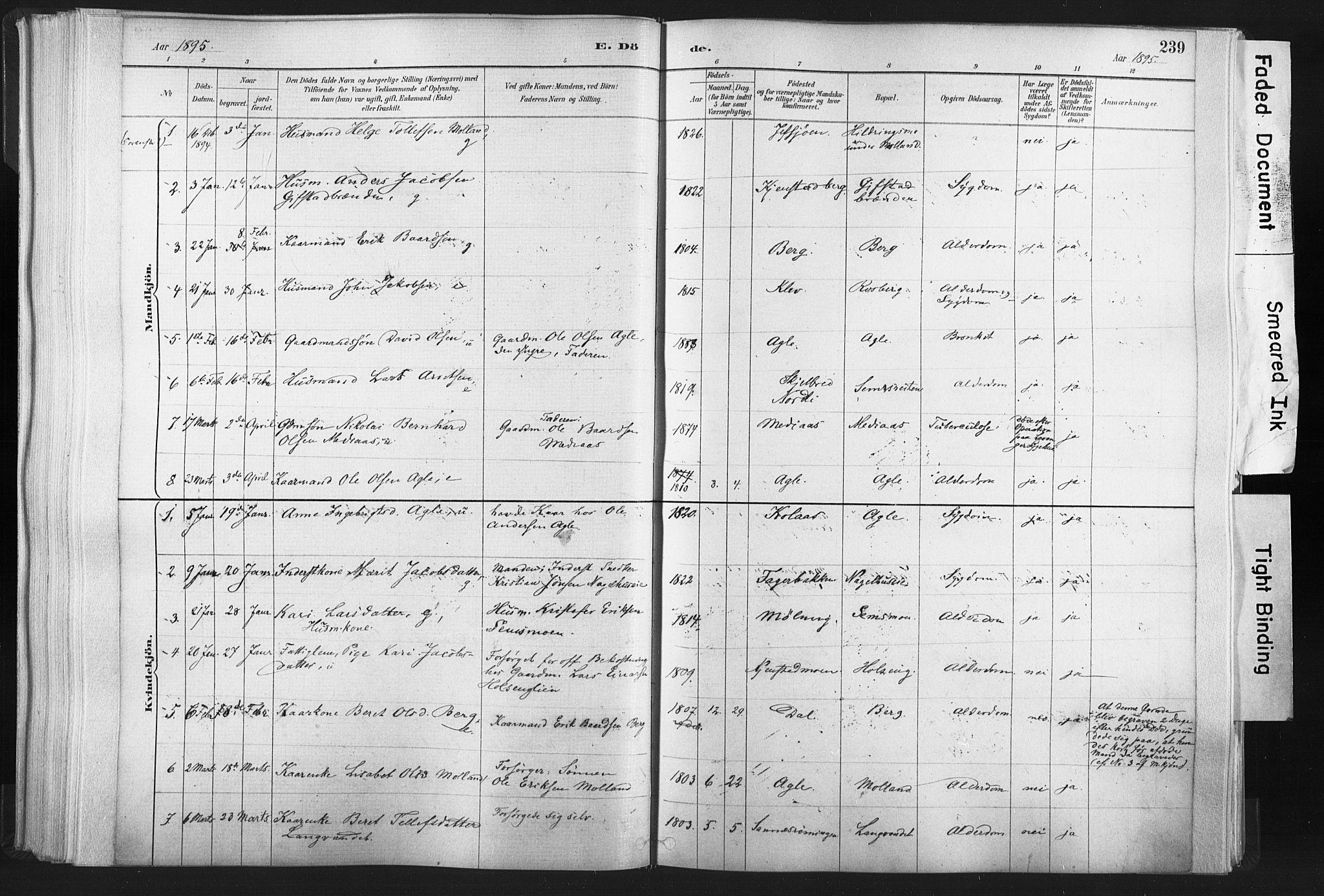 SAT, Ministerialprotokoller, klokkerbøker og fødselsregistre - Nord-Trøndelag, 749/L0474: Ministerialbok nr. 749A08, 1887-1903, s. 239