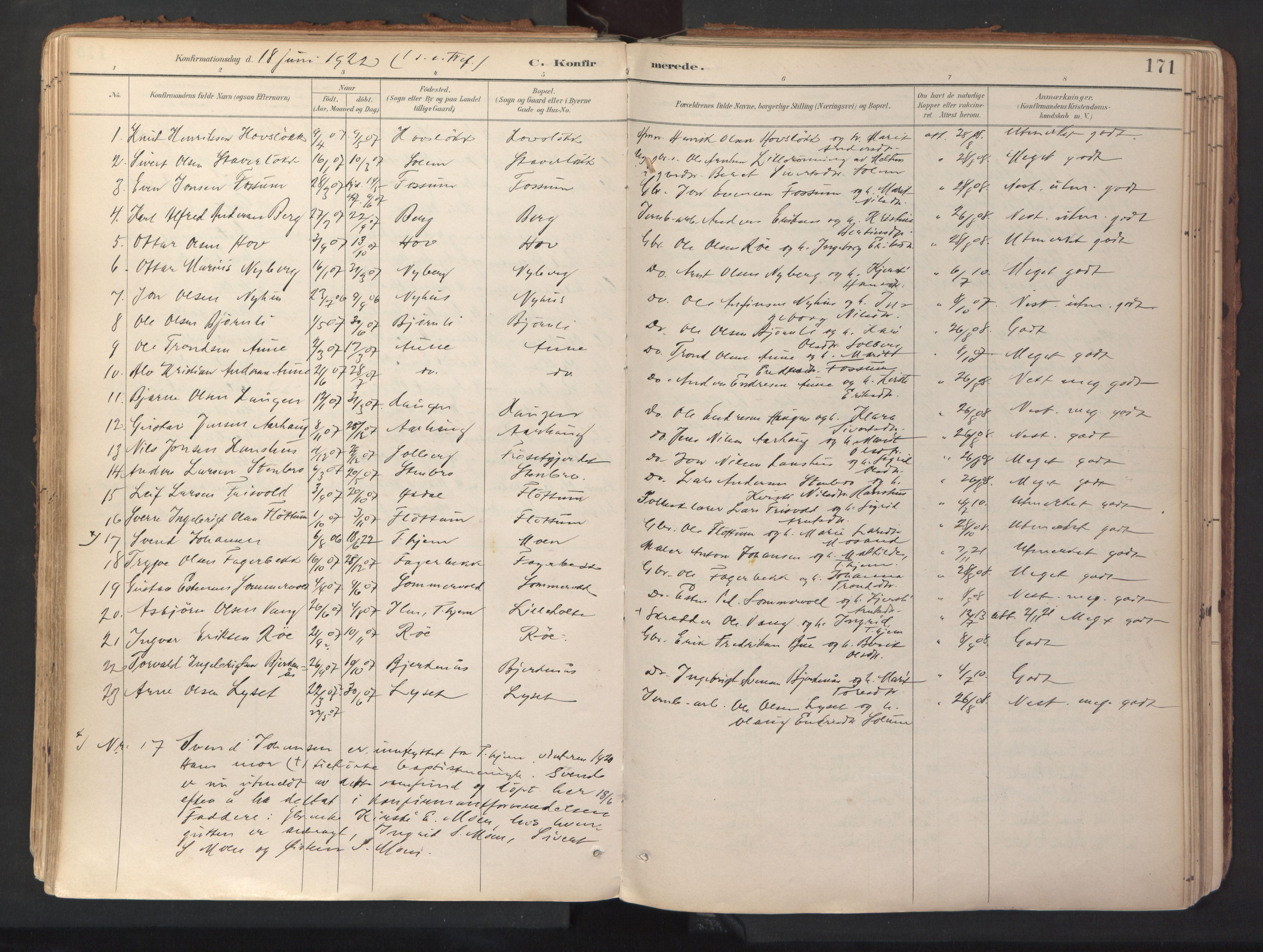 SAT, Ministerialprotokoller, klokkerbøker og fødselsregistre - Sør-Trøndelag, 689/L1041: Ministerialbok nr. 689A06, 1891-1923, s. 171