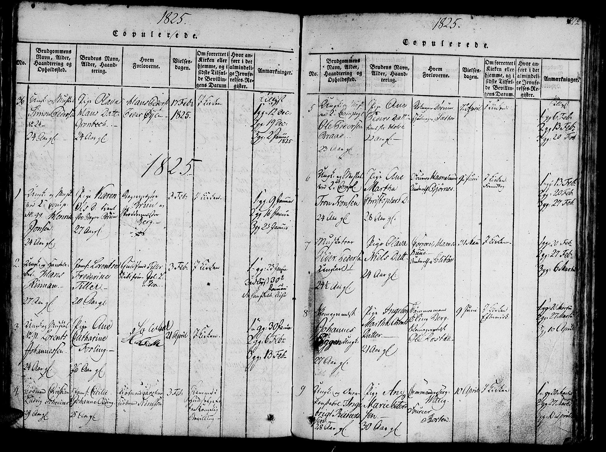 SAT, Ministerialprotokoller, klokkerbøker og fødselsregistre - Sør-Trøndelag, 602/L0135: Klokkerbok nr. 602C03, 1815-1832, s. 212