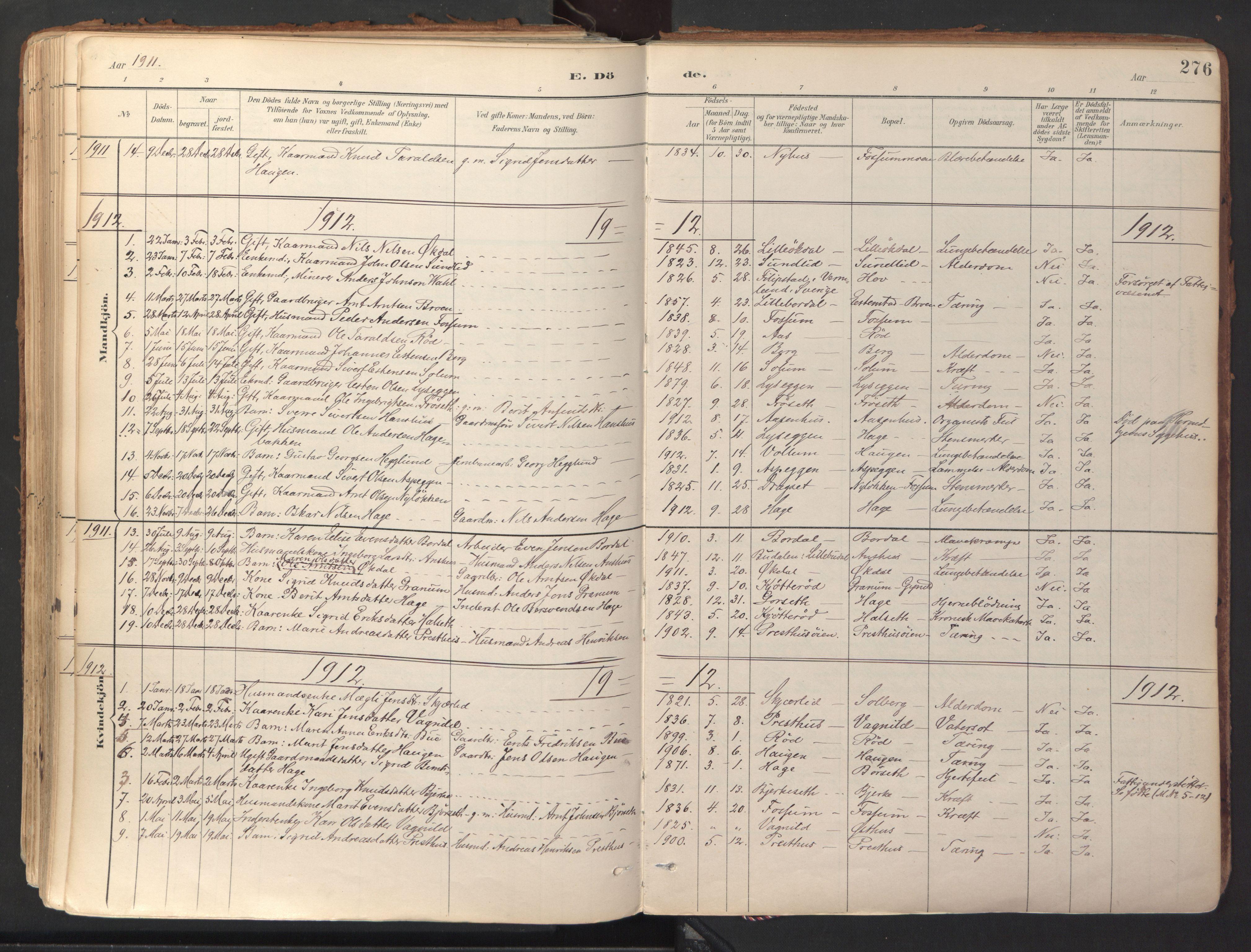 SAT, Ministerialprotokoller, klokkerbøker og fødselsregistre - Sør-Trøndelag, 689/L1041: Ministerialbok nr. 689A06, 1891-1923, s. 276