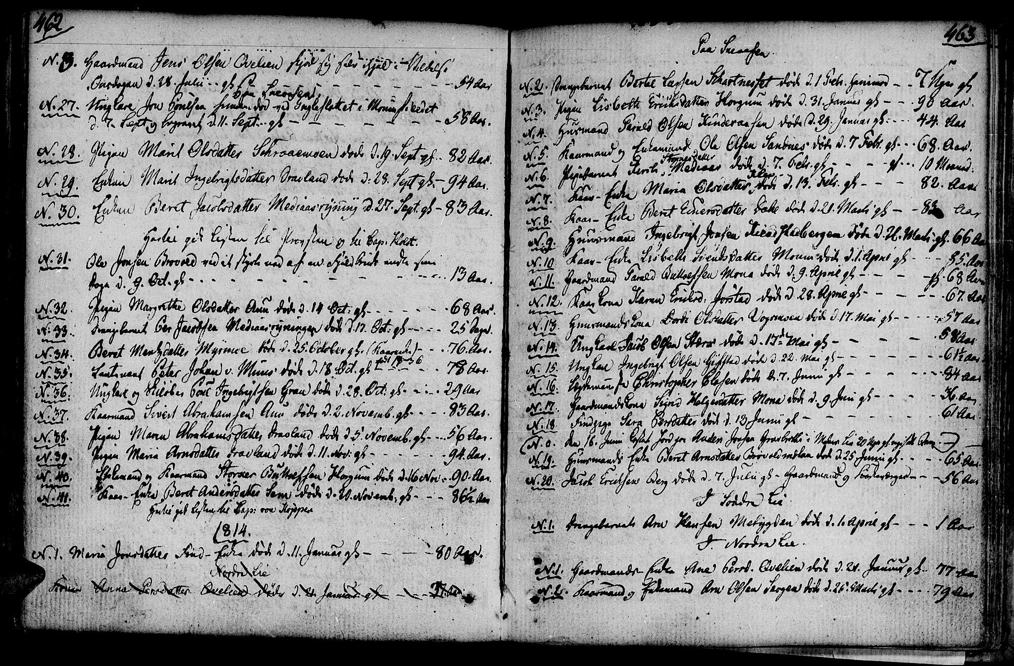 SAT, Ministerialprotokoller, klokkerbøker og fødselsregistre - Nord-Trøndelag, 749/L0468: Ministerialbok nr. 749A02, 1787-1817, s. 462-463