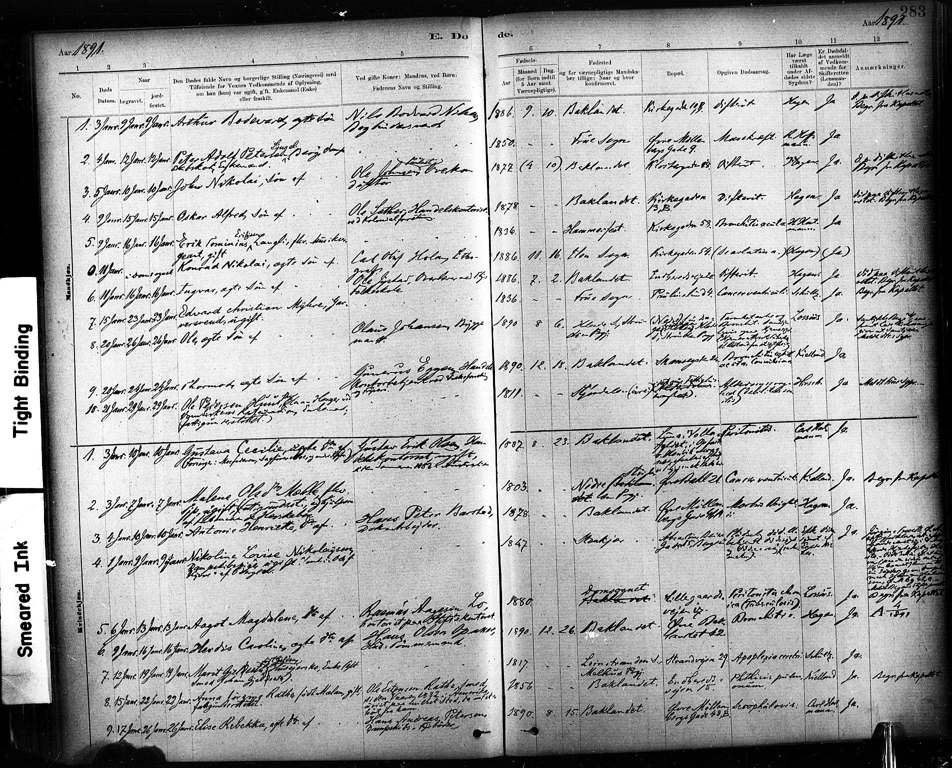 SAT, Ministerialprotokoller, klokkerbøker og fødselsregistre - Sør-Trøndelag, 604/L0189: Ministerialbok nr. 604A10, 1878-1892, s. 283